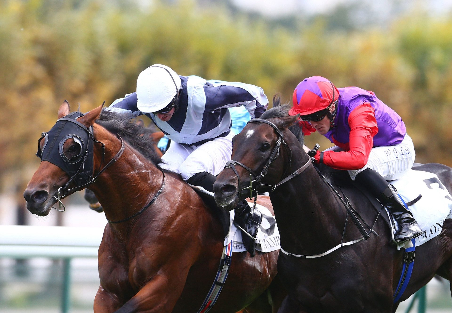 Circus Maximus Wins The Prix Du Moulin