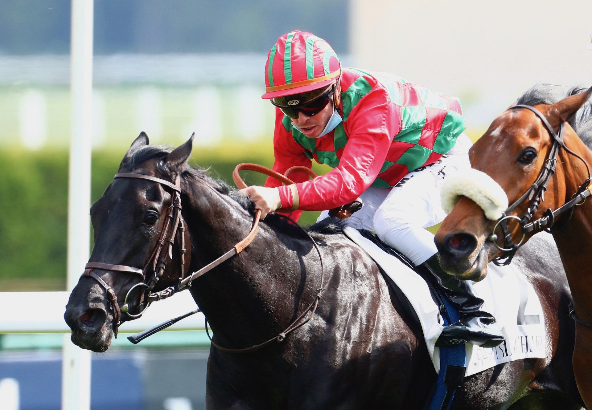 Cirona (Maxios) Lands The Gr.3 Prix De La Grotte at Longchamp