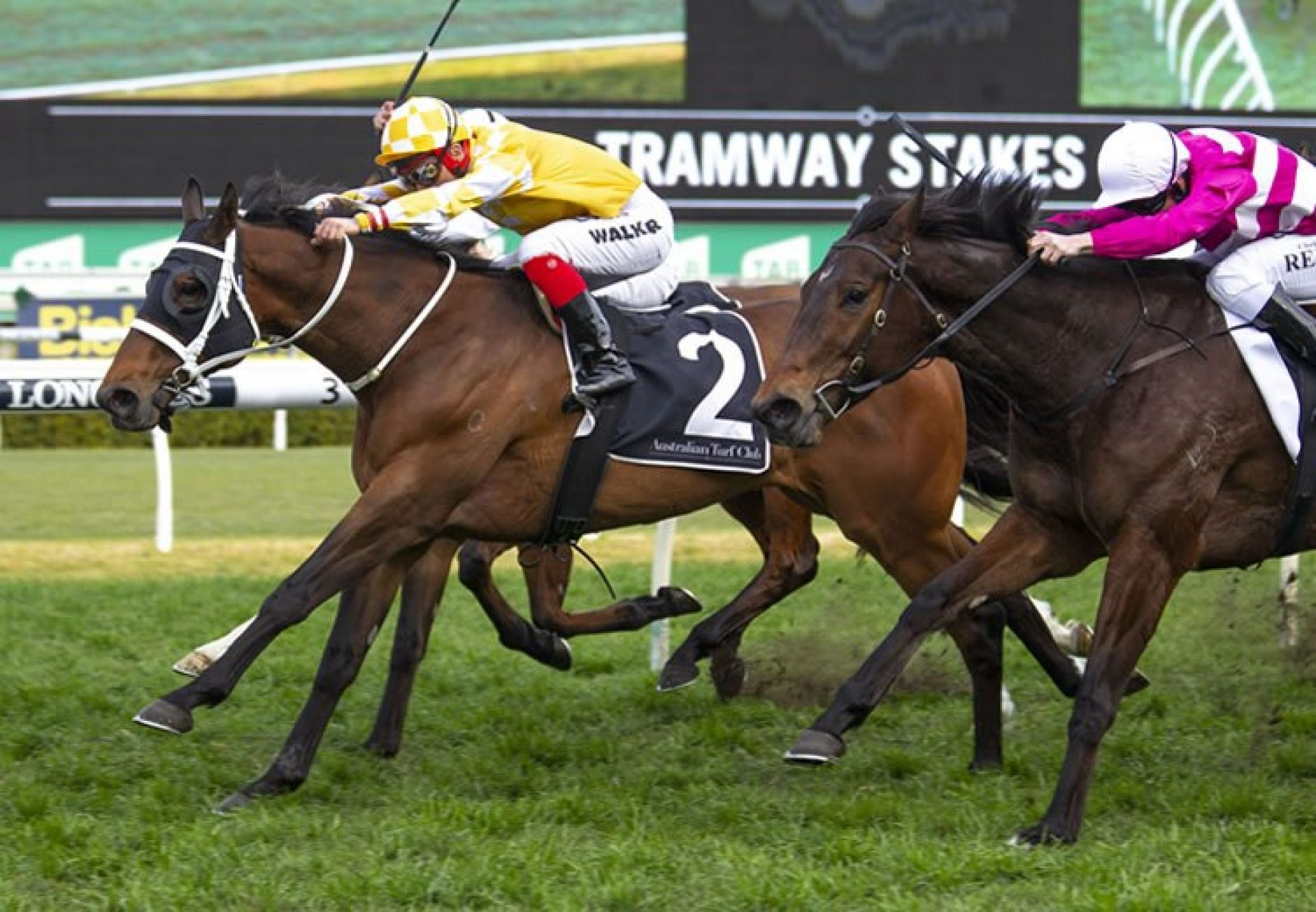 Comin Through (Fastnet Rock) winning the G2 ATC Tramway Stakes at Randwick
