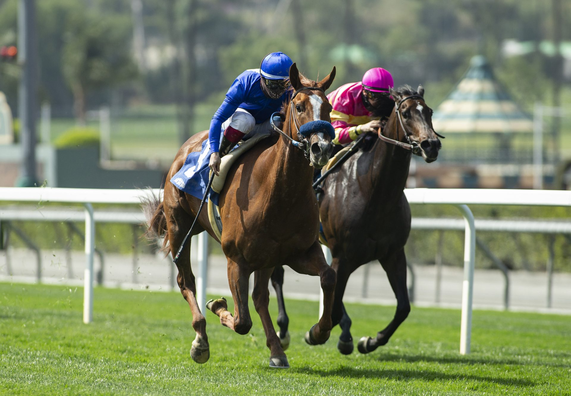 Constantia (Munnings) wins the Listed Mizdirection Stakes