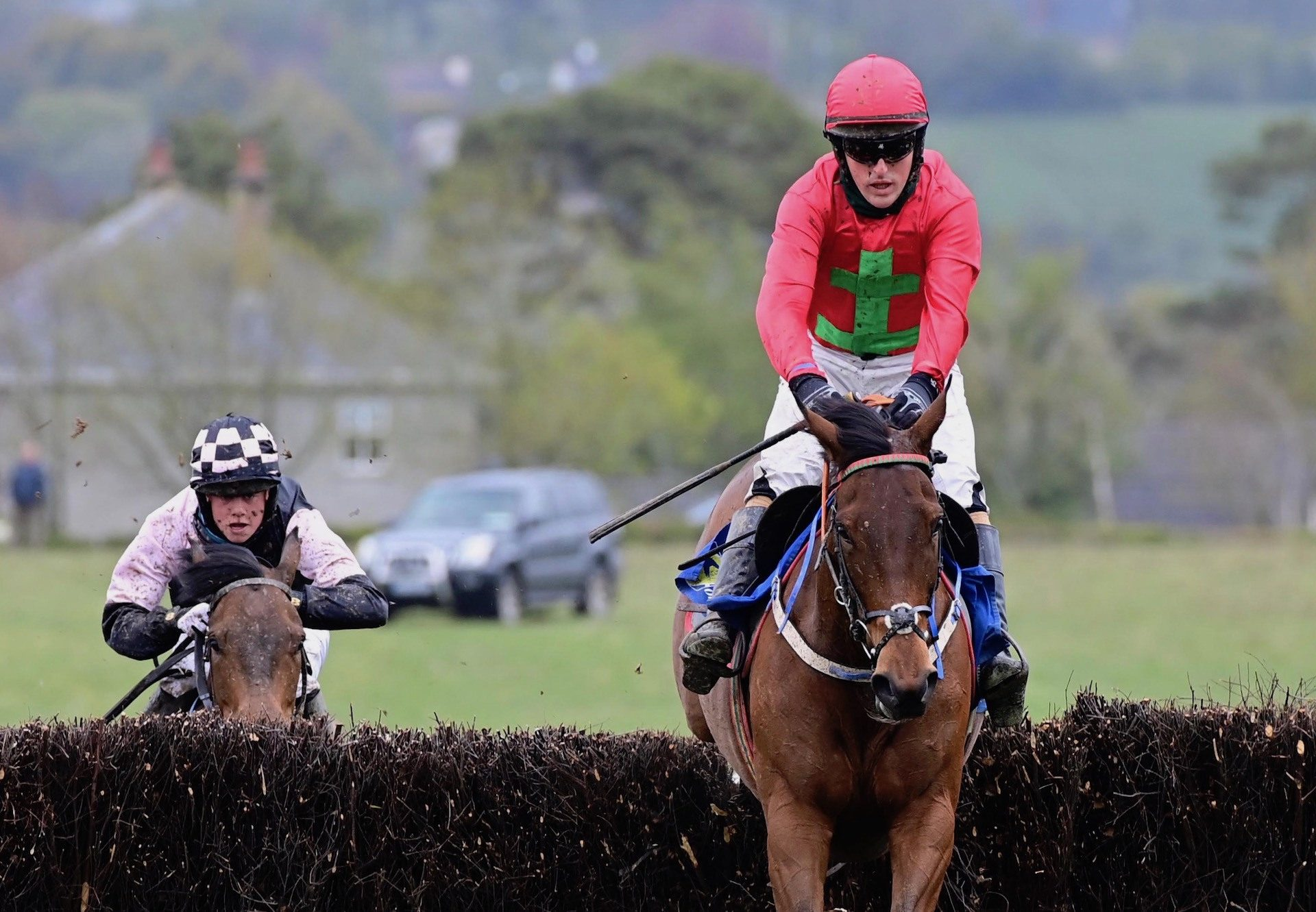 Copper Nation (Westerner) Wins The Four Year Old Mares Maiden At Dromahane
