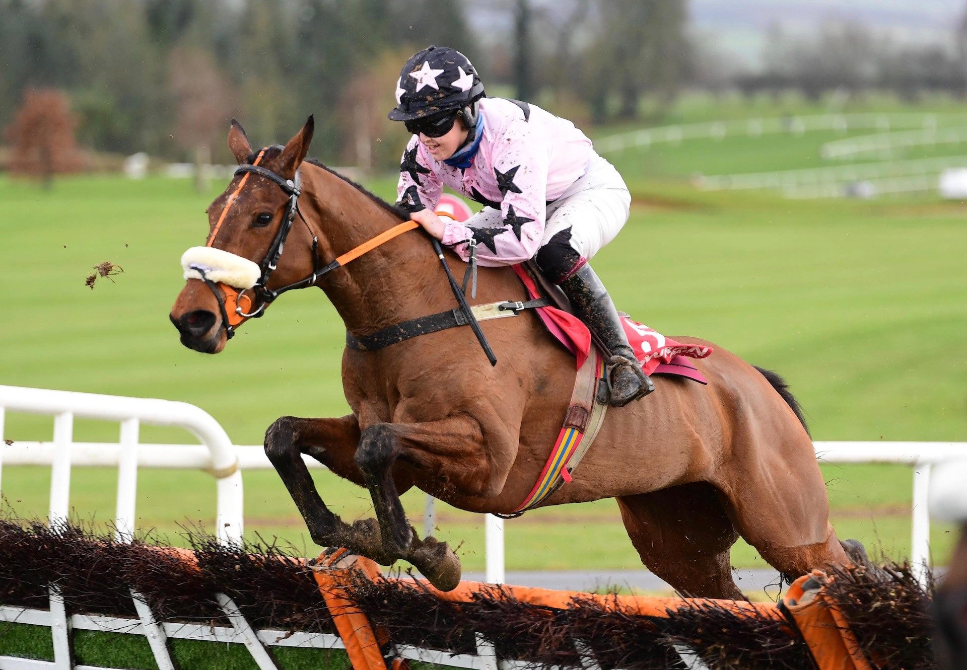 Could Be Trouble (Yeats) Wins The Mares Maiden Hurdle At Gowran Park