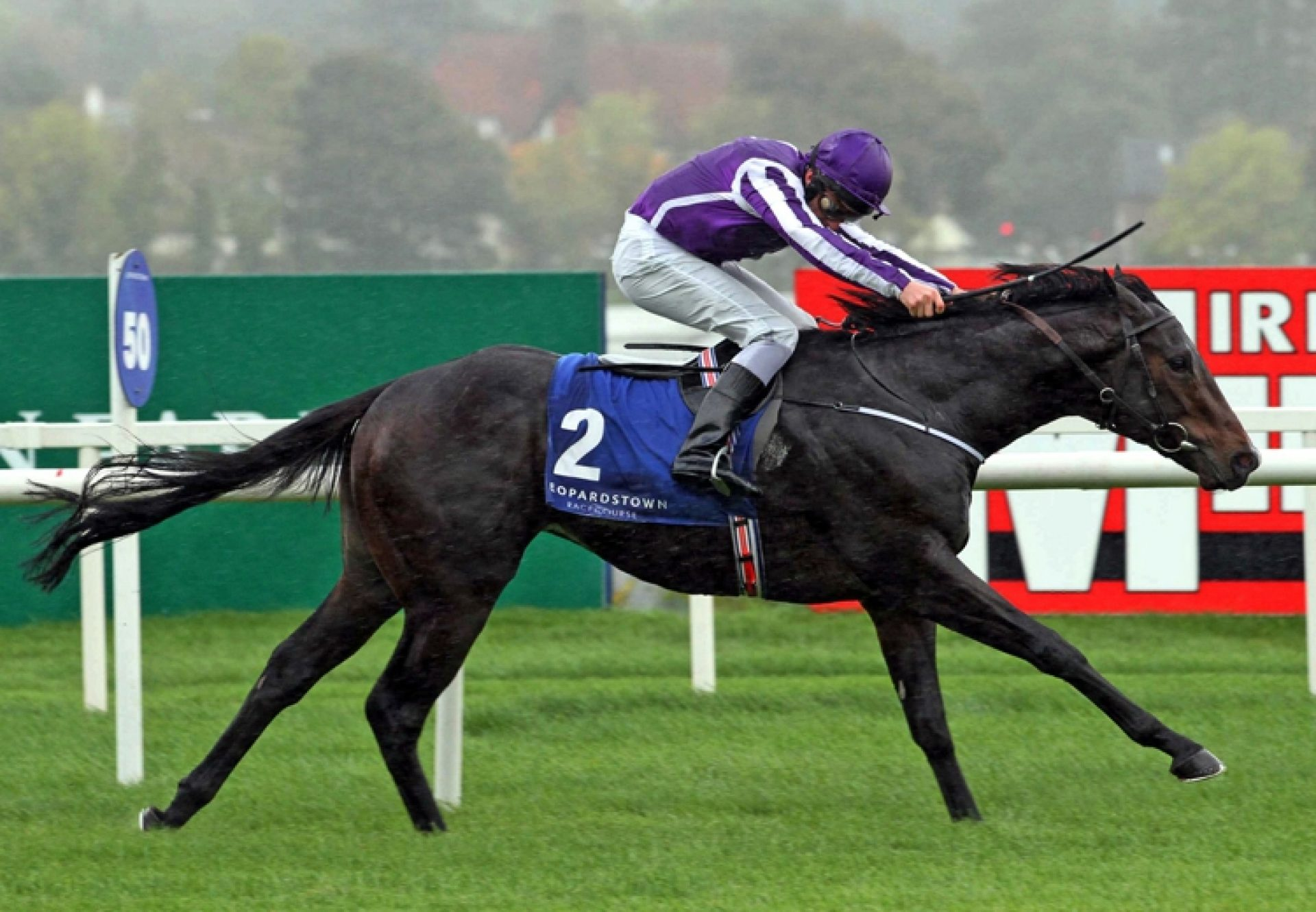 Craftsman (Mastercraftsman) winning the Gr.3 Killavullan Stakes at Leopardstown