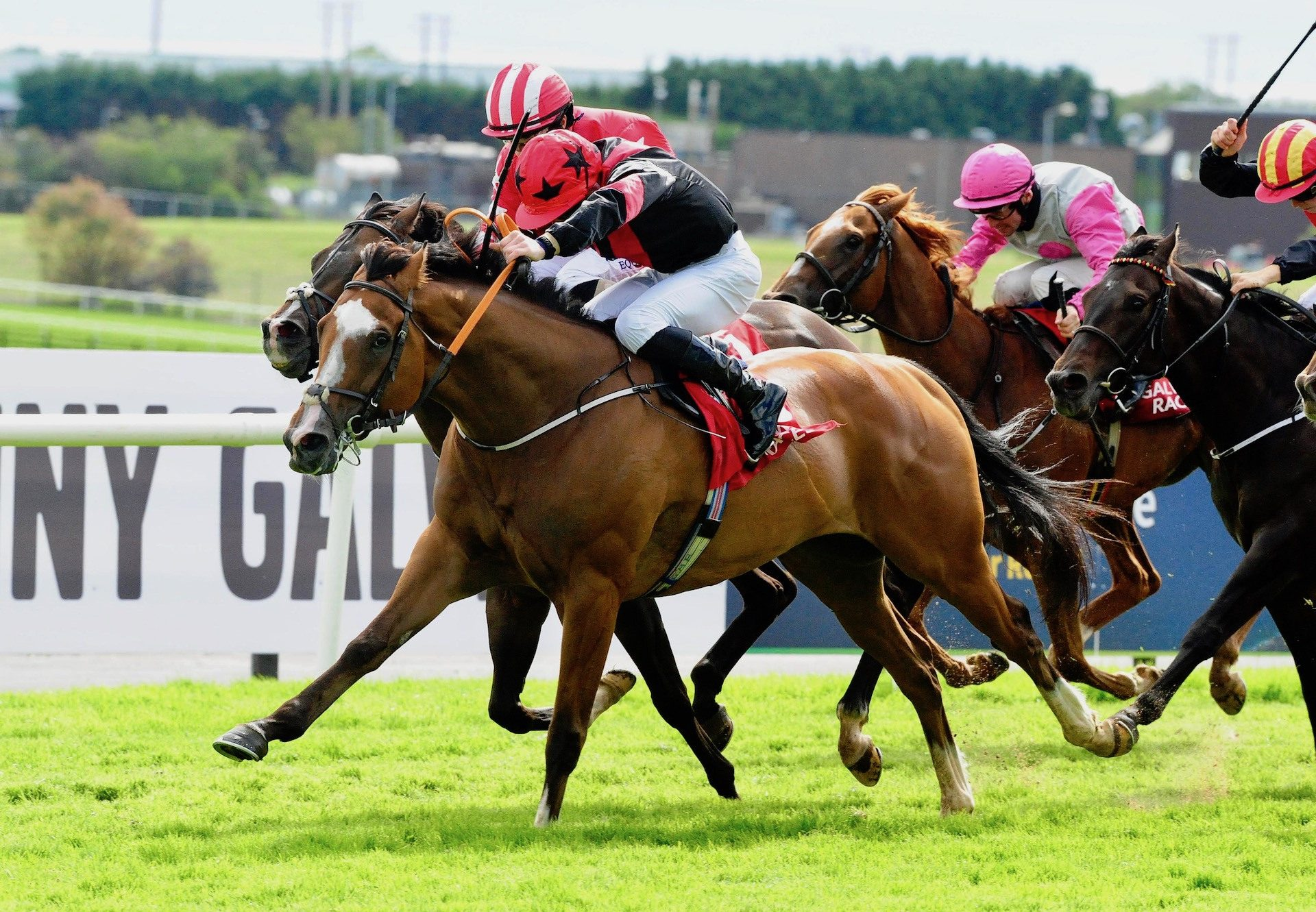 Current Option (Camelot) Wins The Ahonoora Handicap At Galway