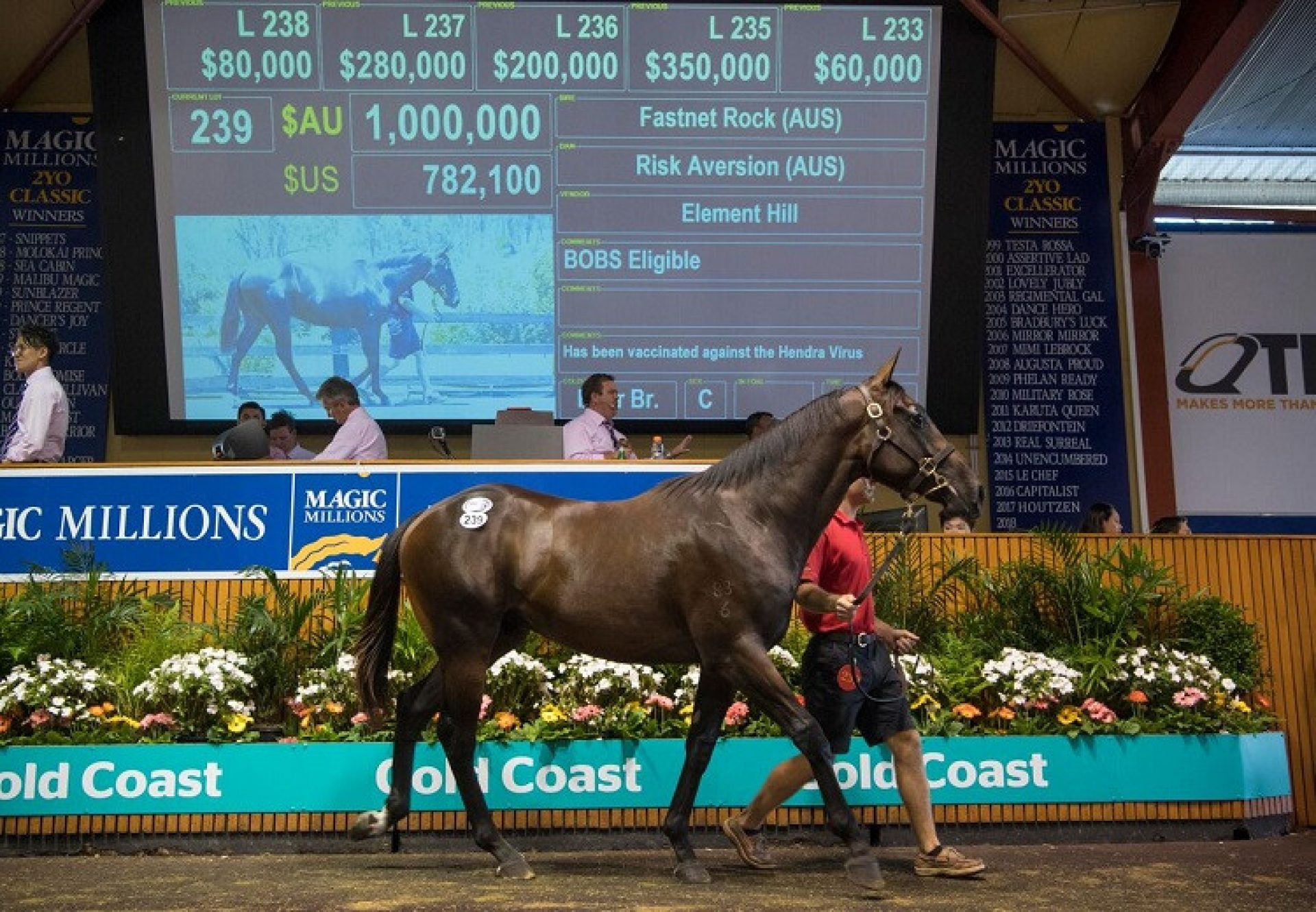 Fastnet Rock ex Risk Aversion colt selling for $1 million at the Magic Millions