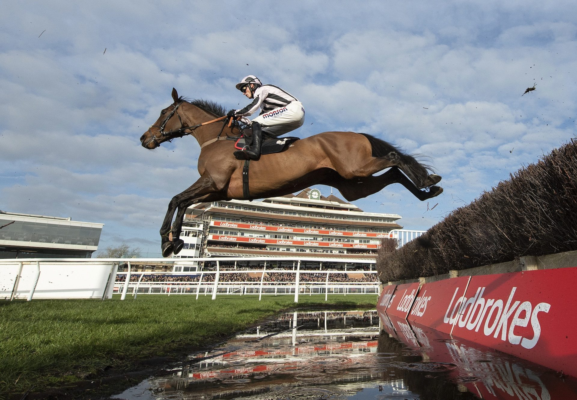Danny Whizzbang (Getaway) wins the Grade 2 John Francome Novices' Chase at Newbury