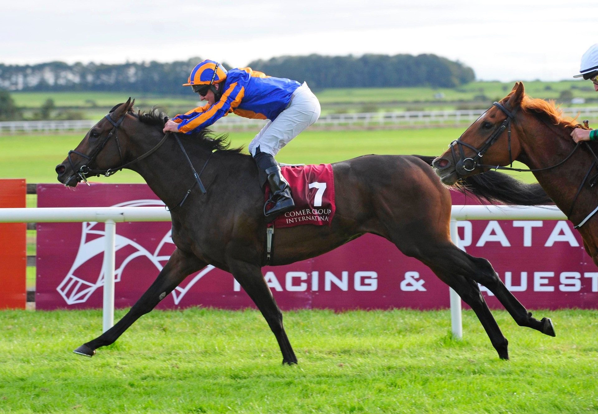 Dawn Patrol (Galileo) Wins The Gr.3 Loughbrown Stakes at the Curragh