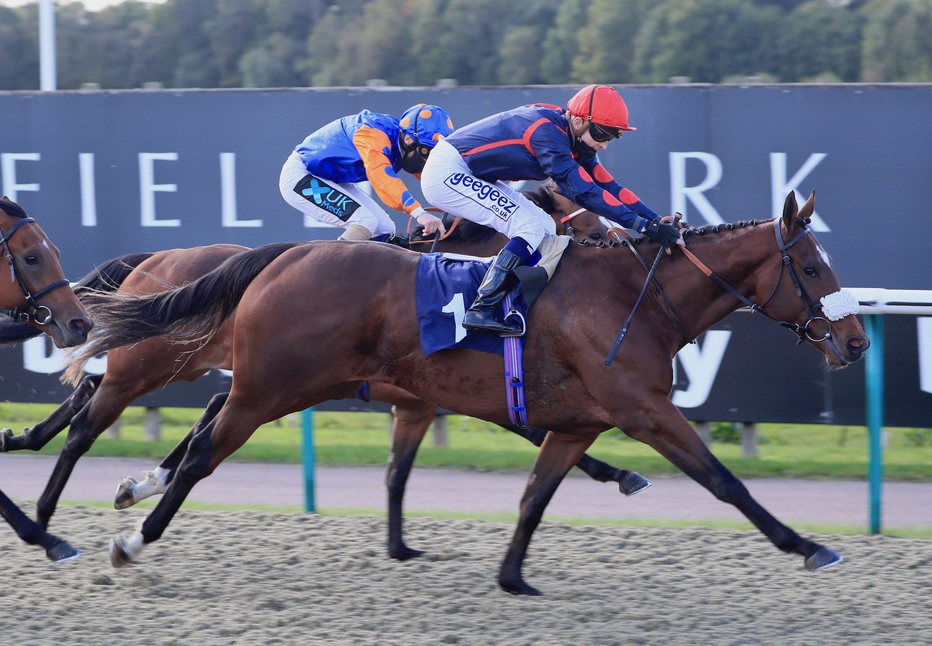 Dejame Paso (The Gurkha) Wins At Lingfield
