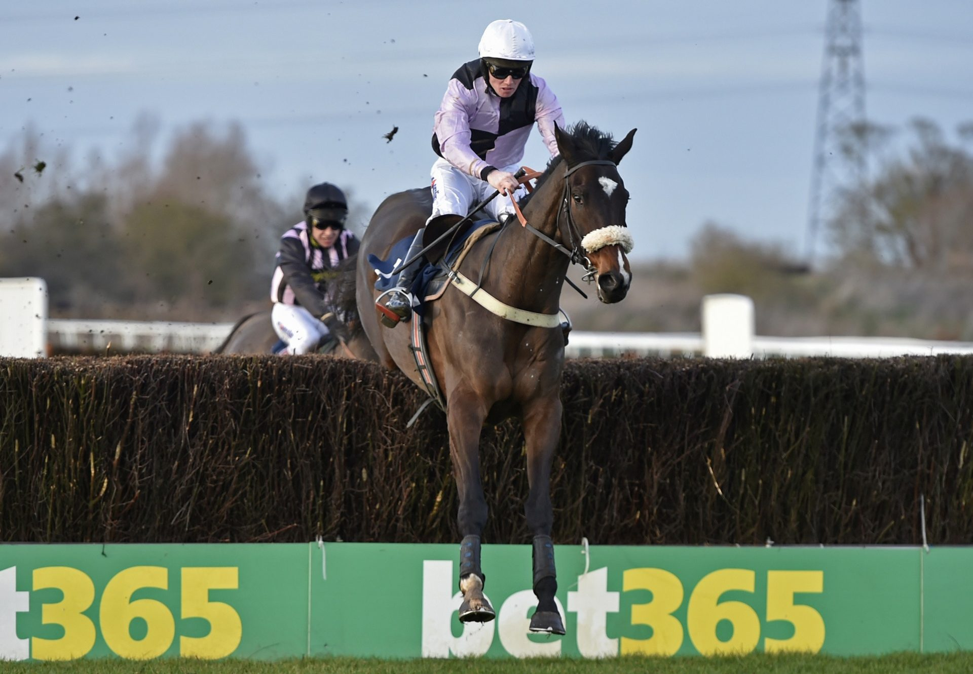 Dell Oro (Walk In The Park) winning the Weatherby's Racing Bank Chase at Huntingdon