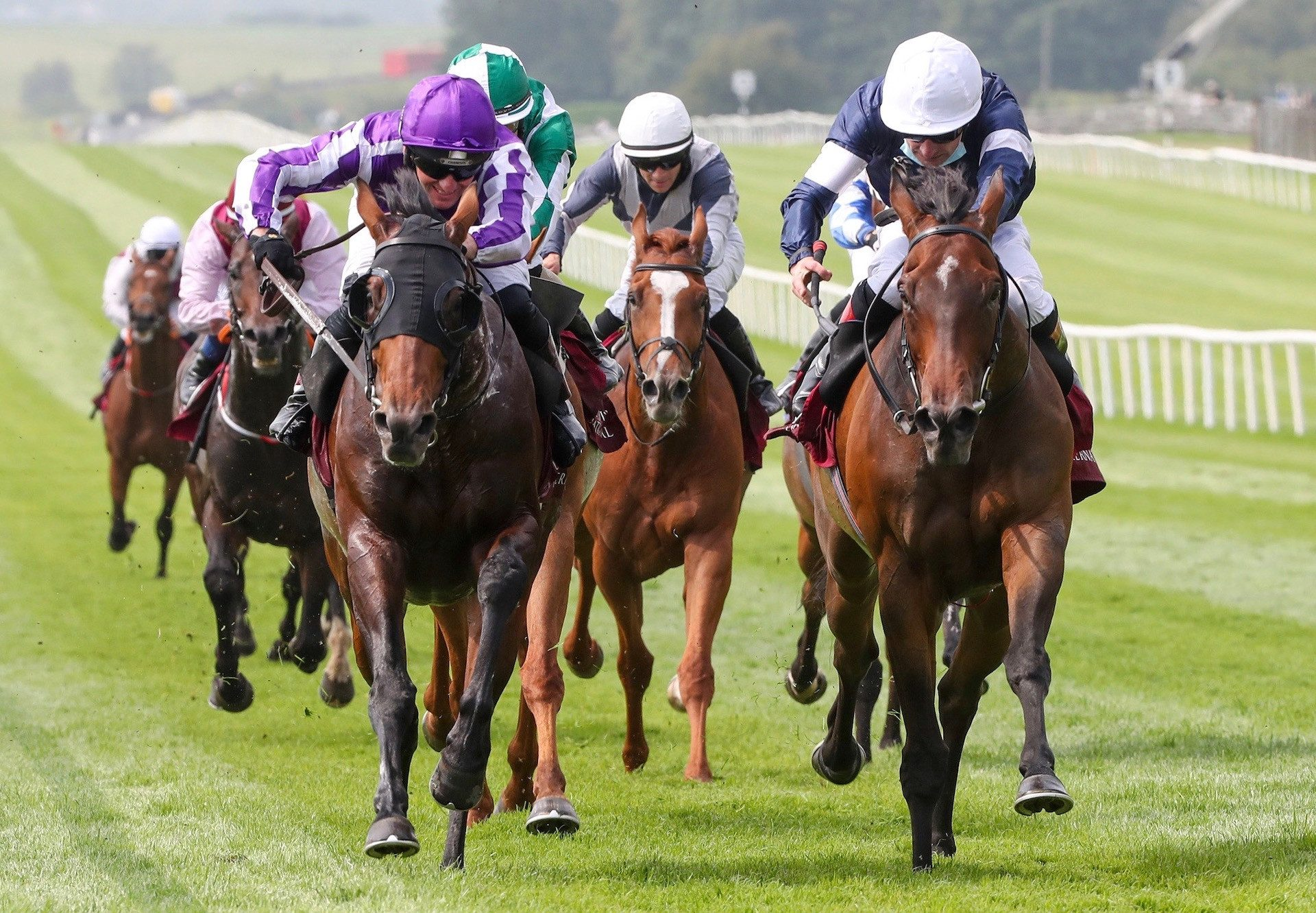 Delphi (Galileo) Wins The Gr.3 Irish St Leger Trial at the Curragh