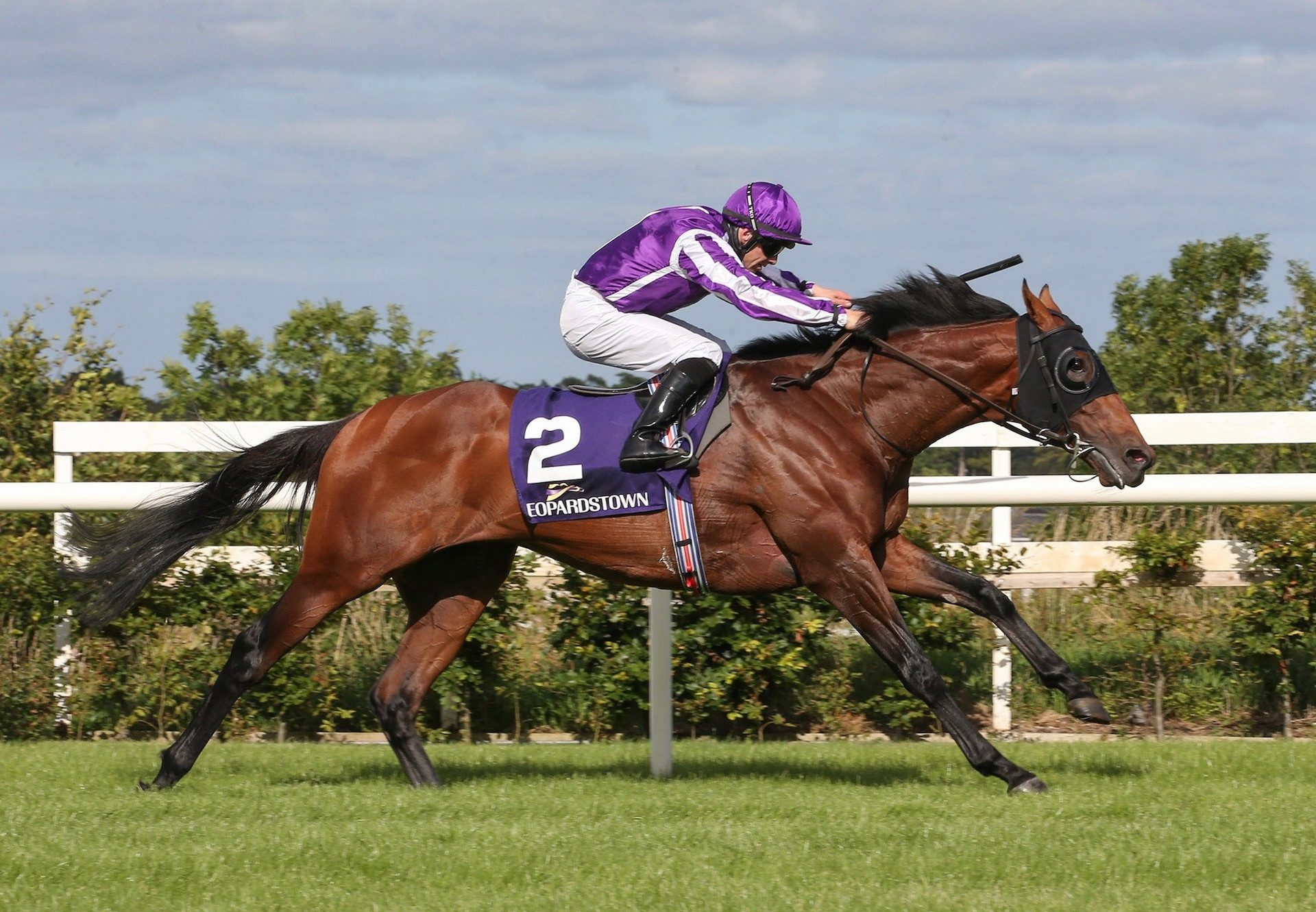 Delphi (Galileo) Wins The Listed Nijinsky Stakes at Leopardstown