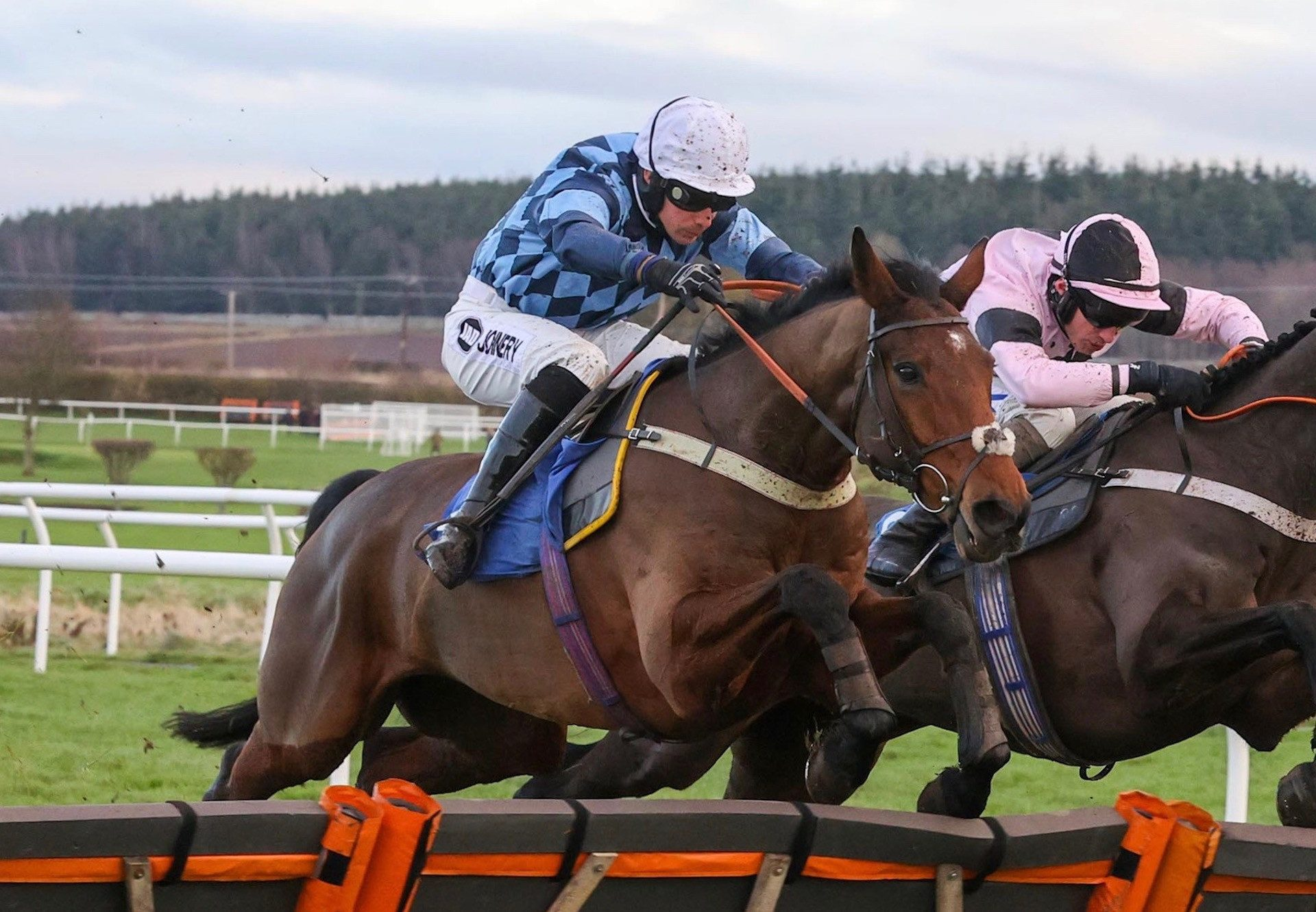 Deluxe Range (Westerner) Wins The Novices Hurdle At Kelso 1