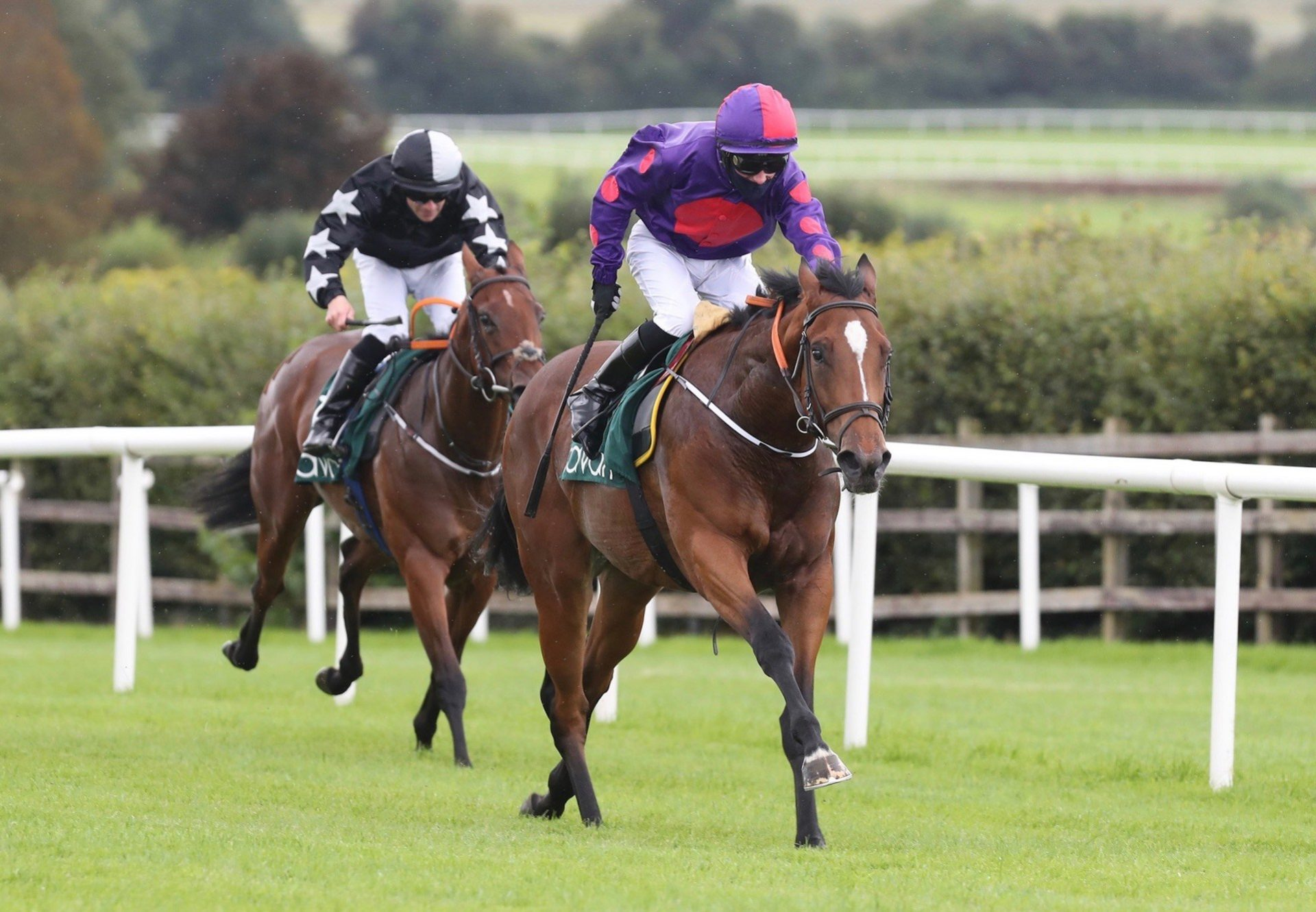 Diamond Eyes (Rock Of Gibraltar) Wins Her Maiden At Navan