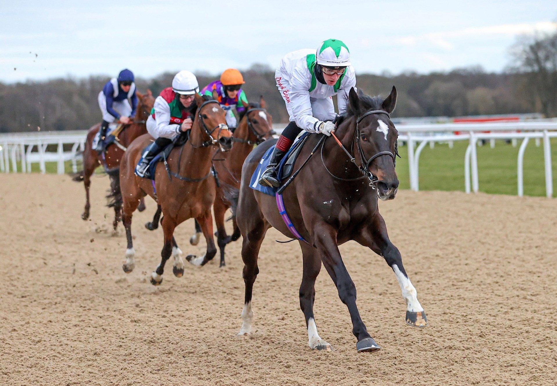 Dirham Emirati (Vadamos) Wins The Novice Stakes At Newcastle