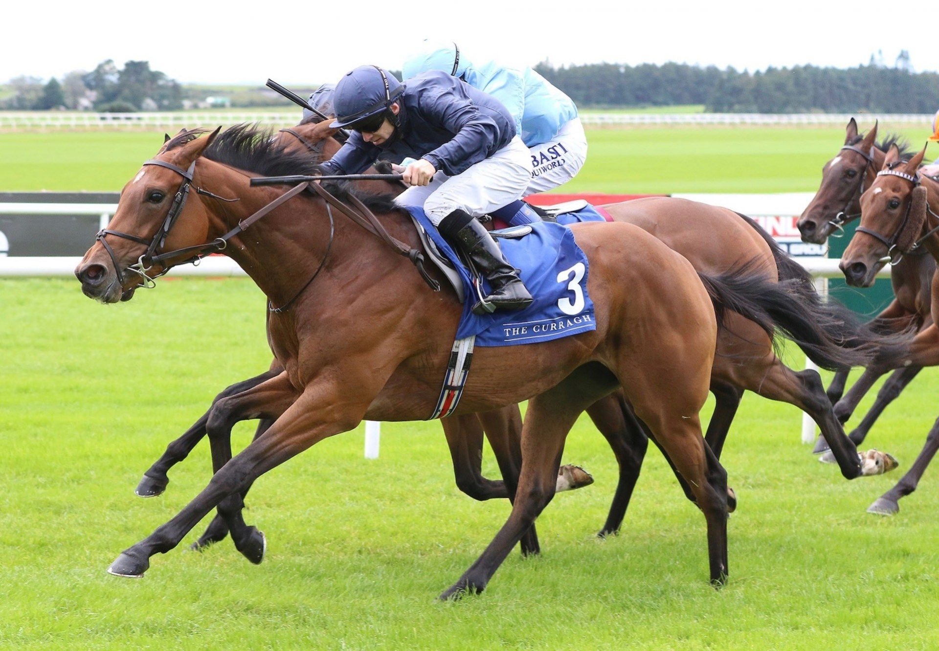 Divinely (Galileo) Wins The Group 3 Flame Of Tara Stakes at the Curragh