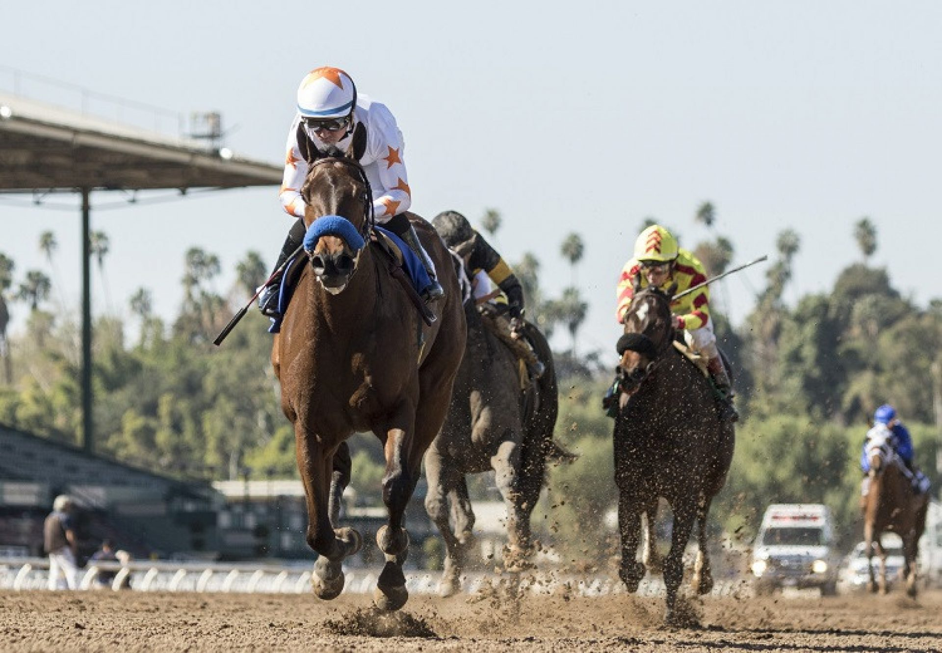 Dream Tree (Uncle Mo) winning the G2 Las Virgenes Stakes at Santa Anita