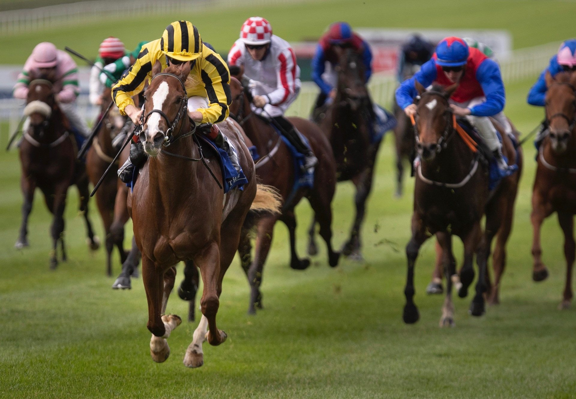 Night Raid (Vancouver) winning the Listed Matrice Stakes at Moonee Valley