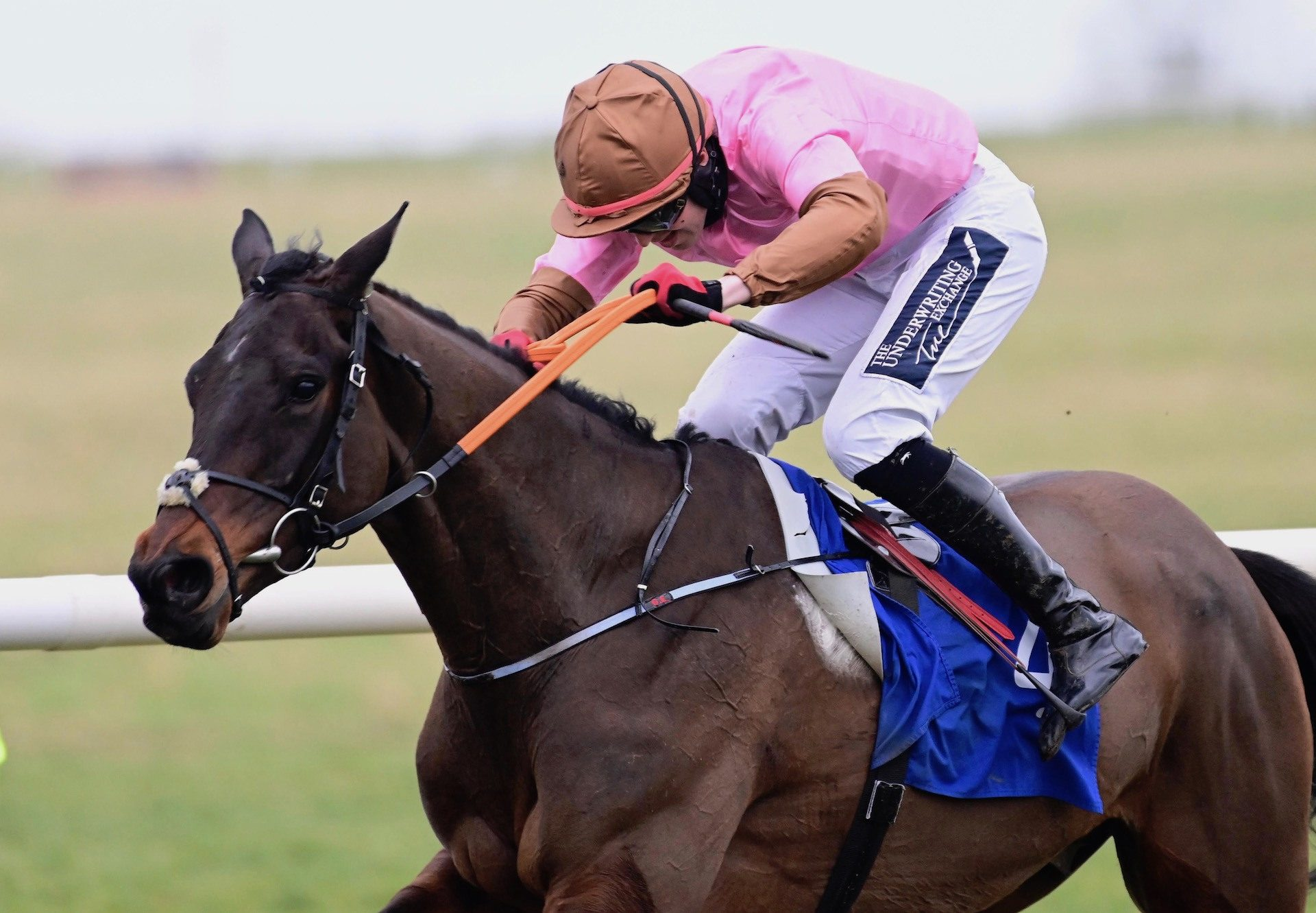 Dunboyne (Yeats) Wins His Maiden Hurdle At Thurles