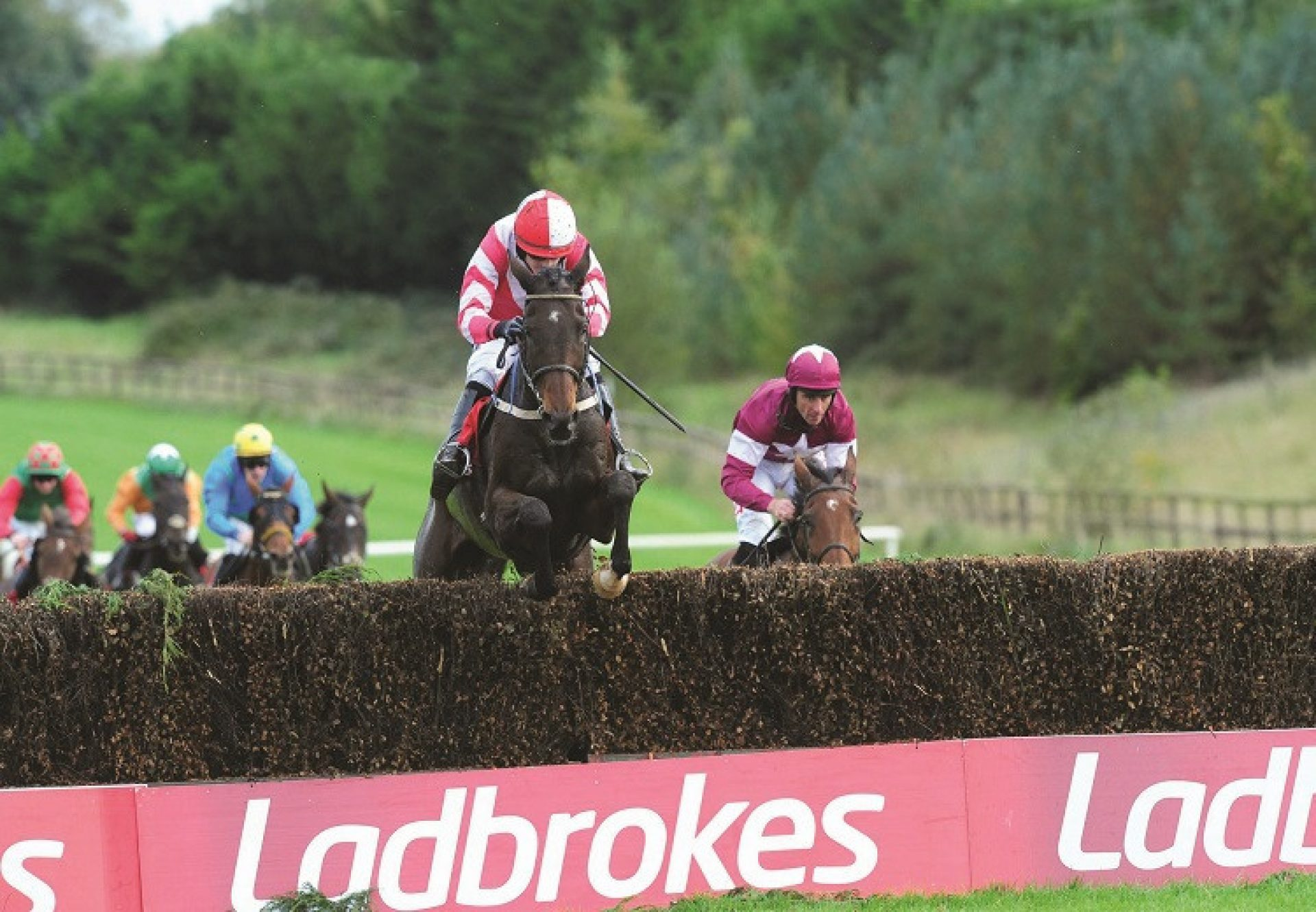 Total Recall (Westerner) winning the Ladbrokes Trophy Chase at Newbury