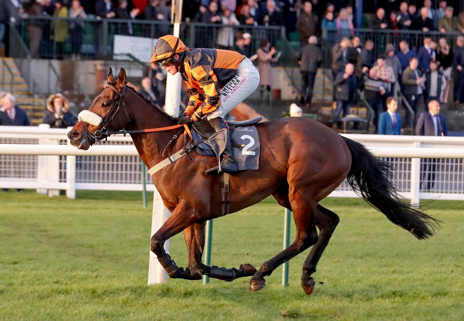 Ebony Jewel (Westerner) Wins Impressively At Ayr