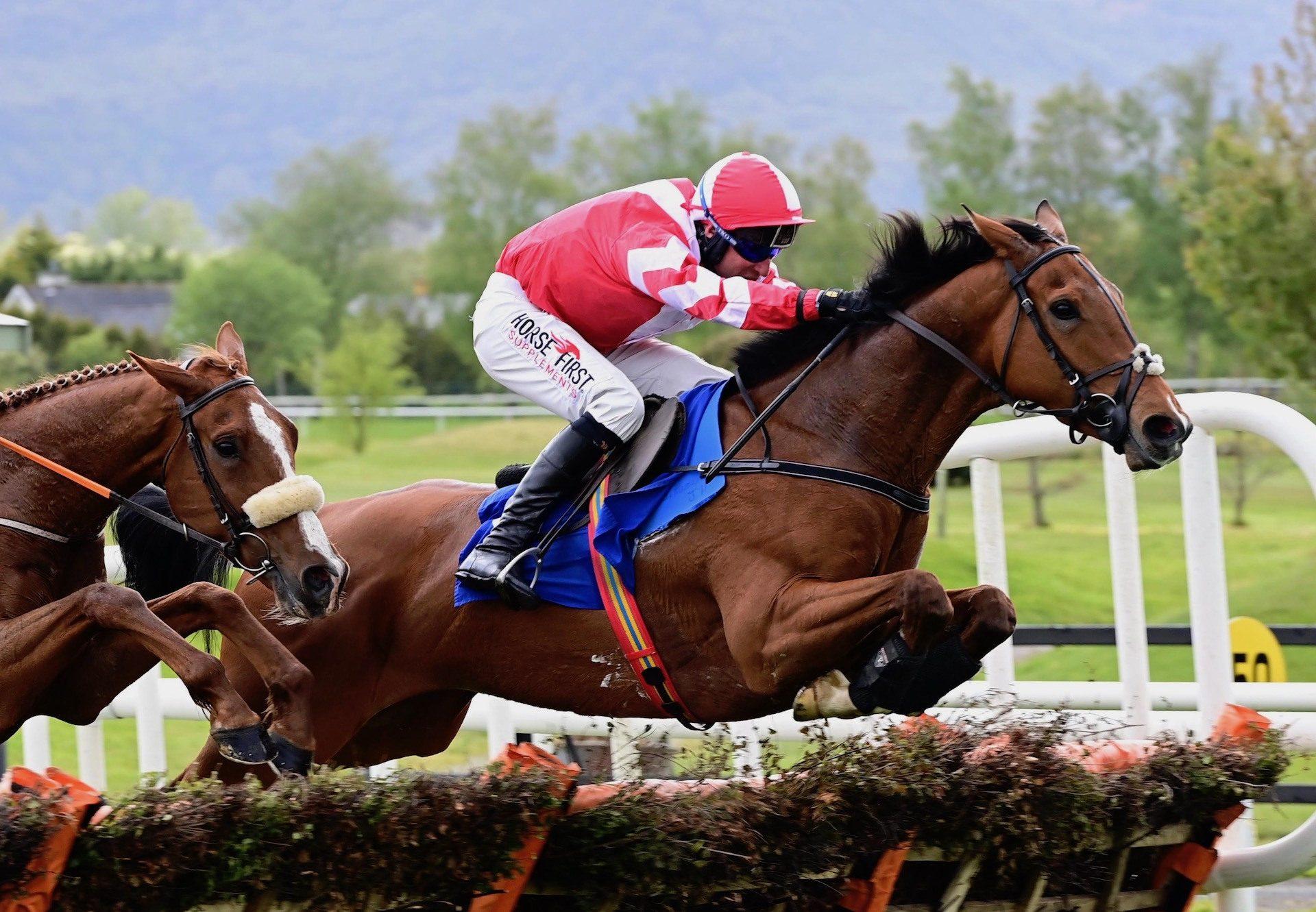 Edison Kent (Leading Light) Wins The Maiden Hurdle At Killarney