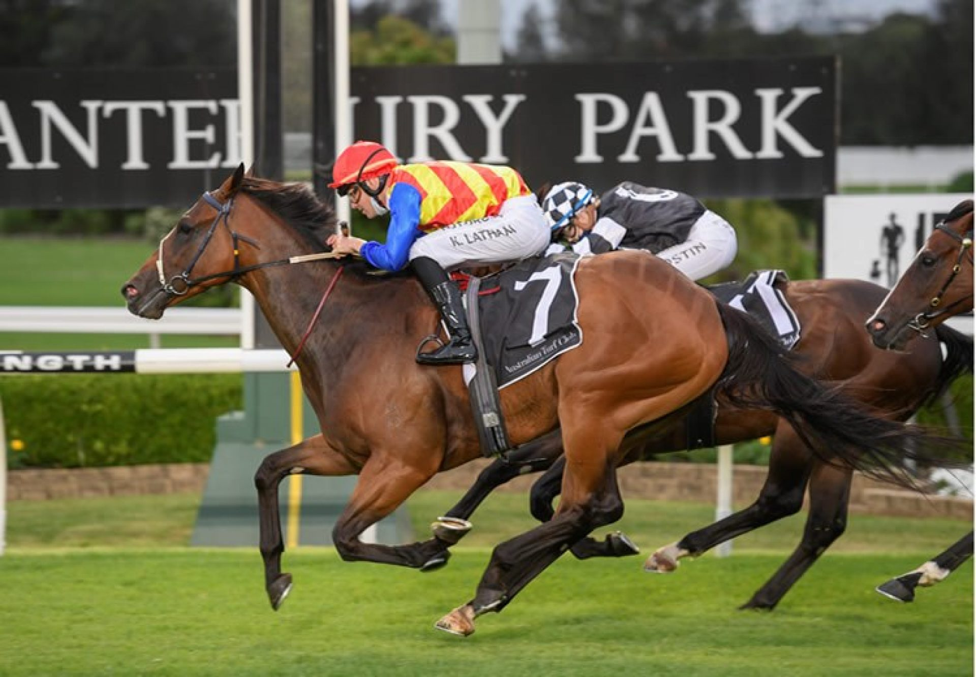 Eleven Eleven (Fastnet Rock) winning the Christmas Classic at Canterbury
