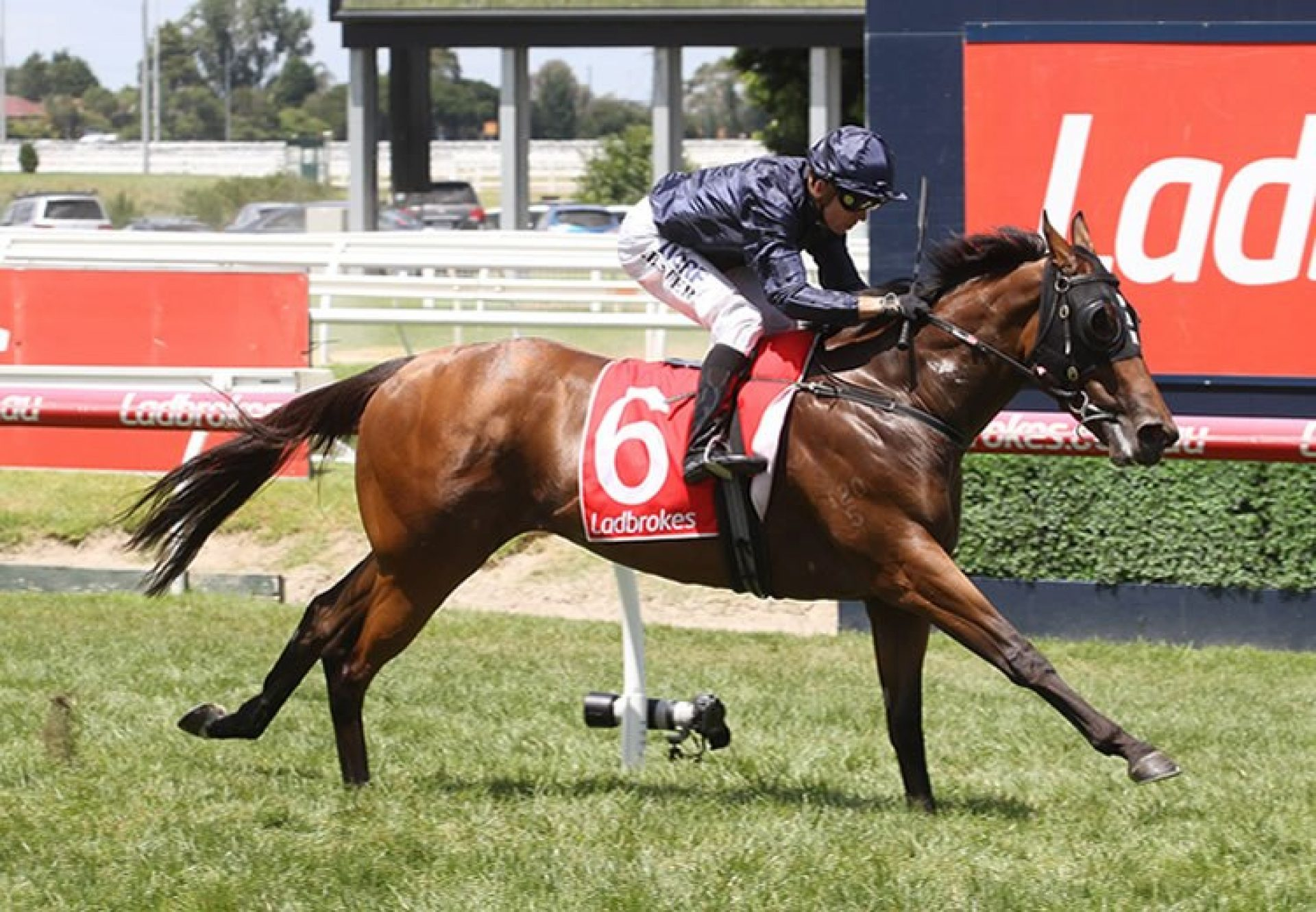 Ennis Hill (Fastnet Rock) winning the G3 Chairman's Stakes at Caulfield