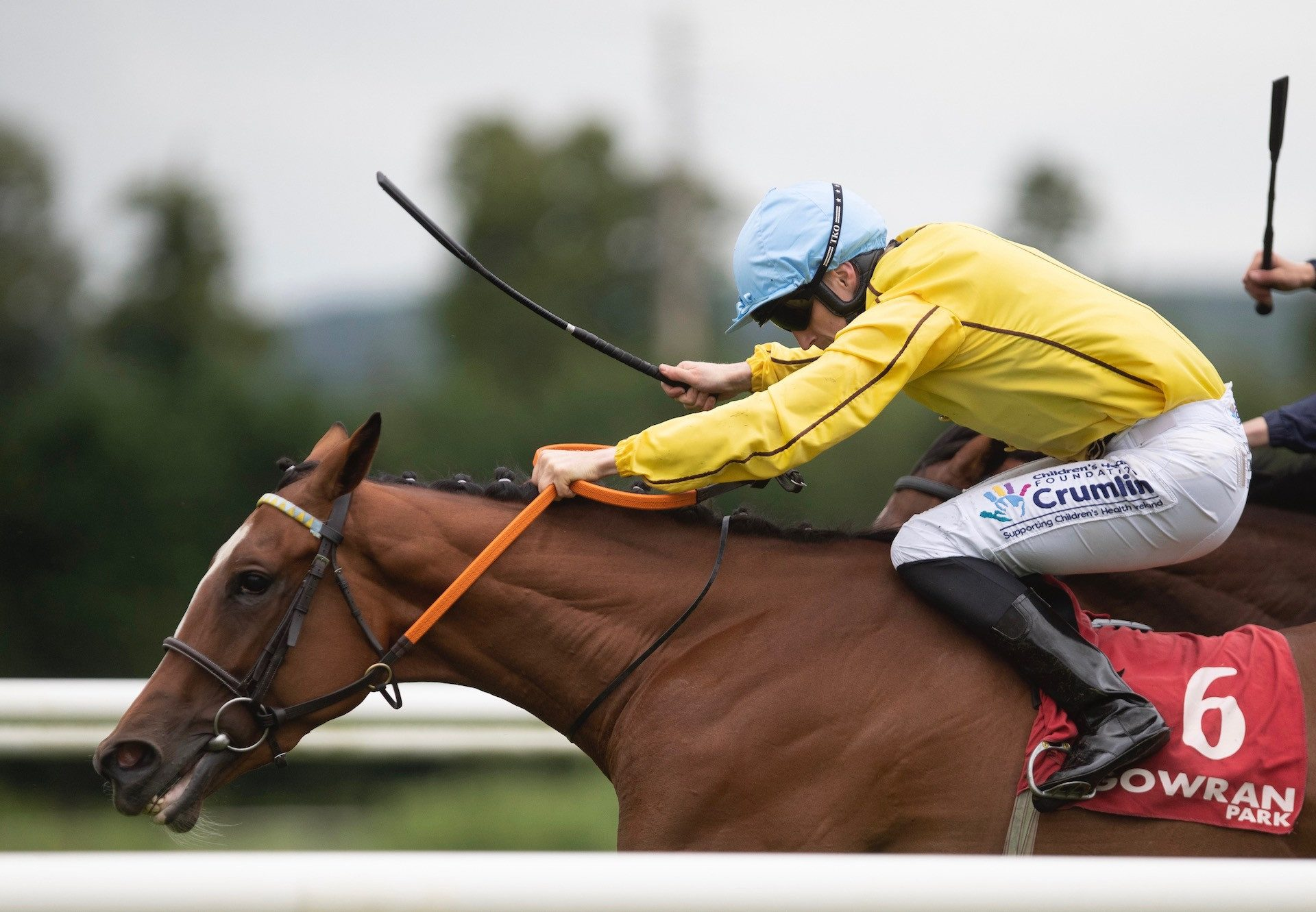 Epona Plays (Australia) Wins Her Maiden At Gowran Park