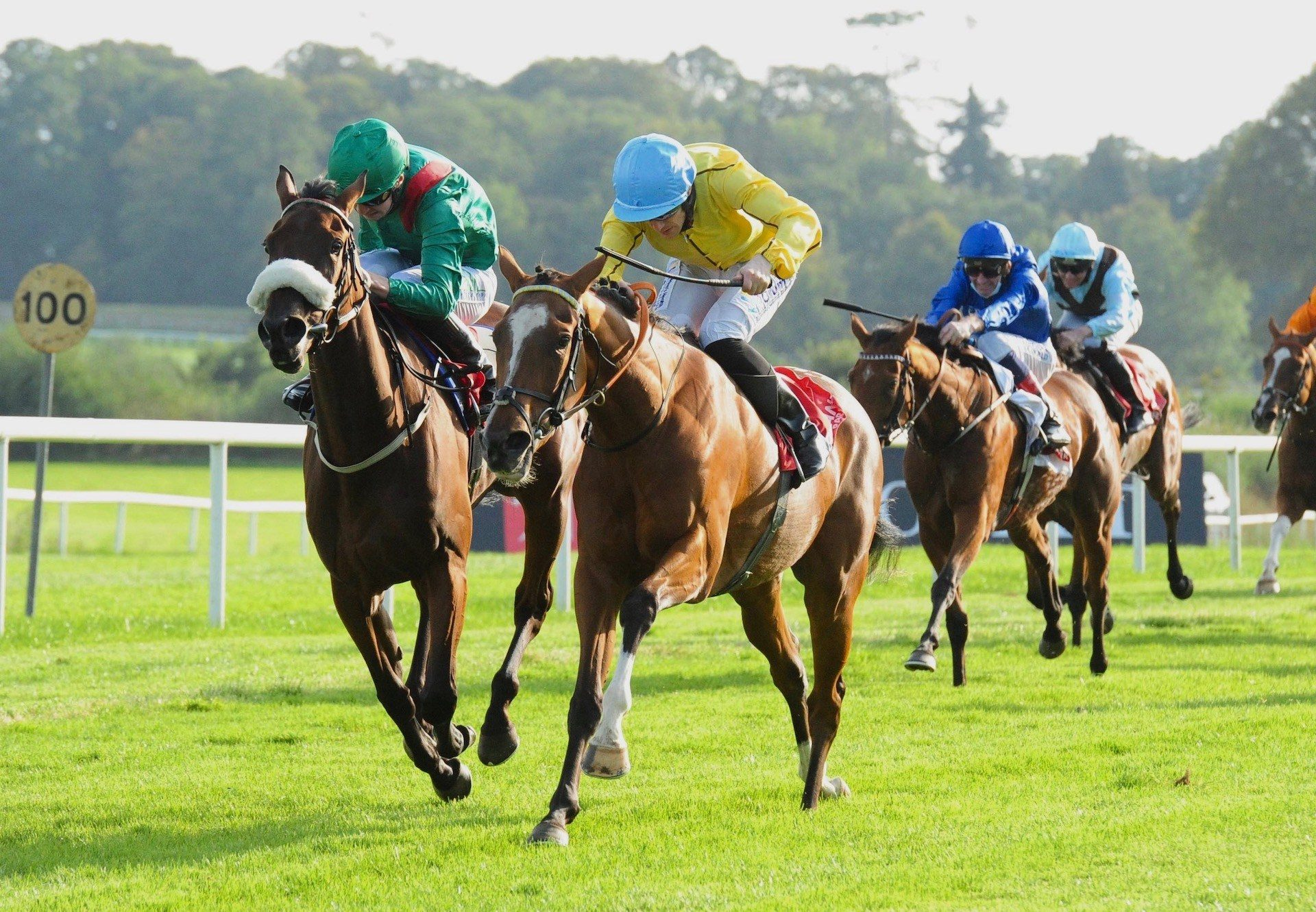 Epona Plays (Australia) Wins The Group 3 Lanwade Stud Stakes At Gowran