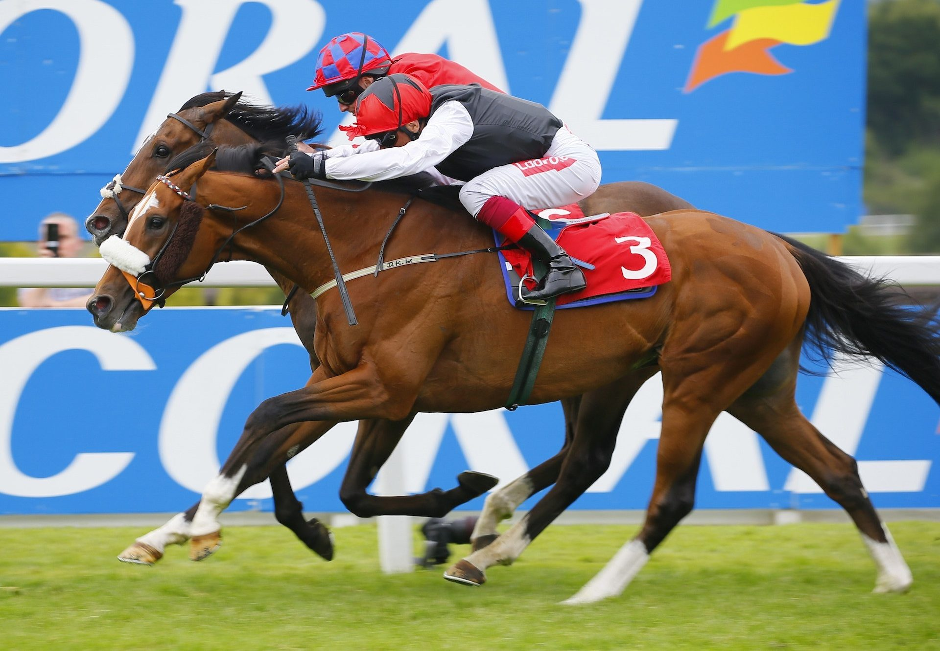 Falcon Eight Becomes The Latest By Winner By Galileo