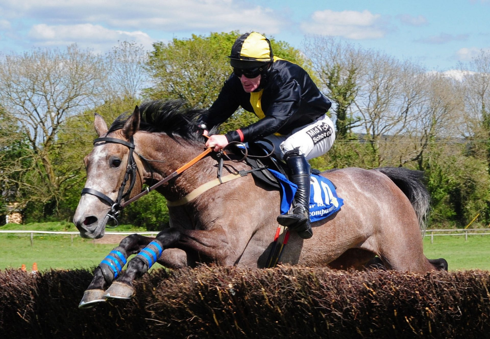 Musical Slave (Getaway) Wins At The  Punchestown  Festival
