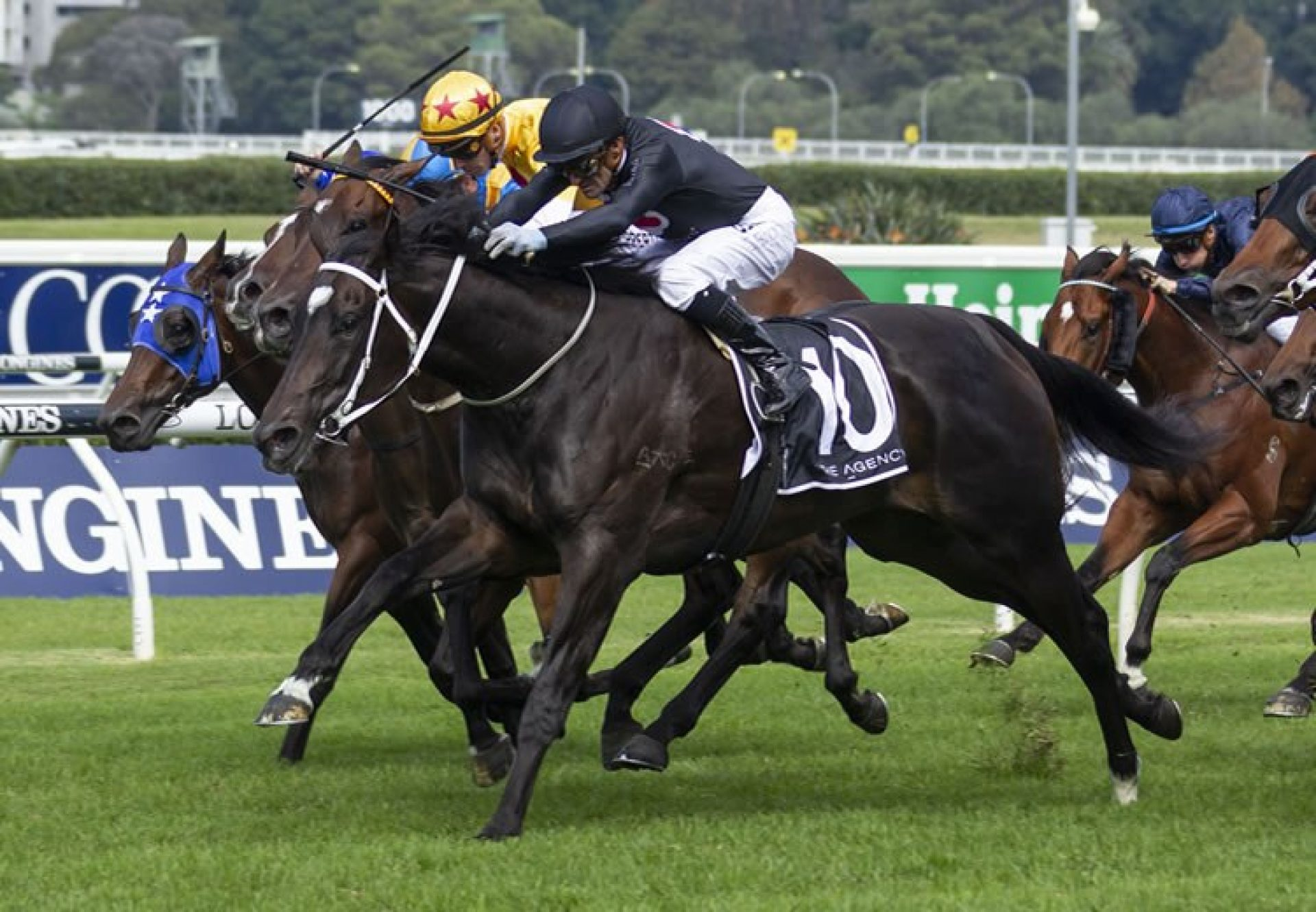 Fasika (So You Think) winning the Listed ATC South Pacific Classic at Randwick