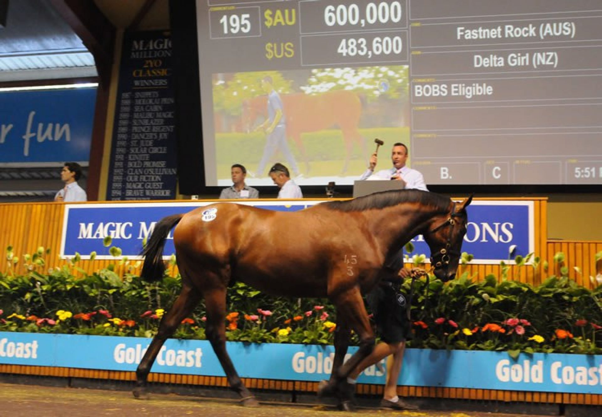 Fastnet Rock ex Delta Girl yearling colt selling for $600,000 at the 2015 Magic Millions Yearling Sale