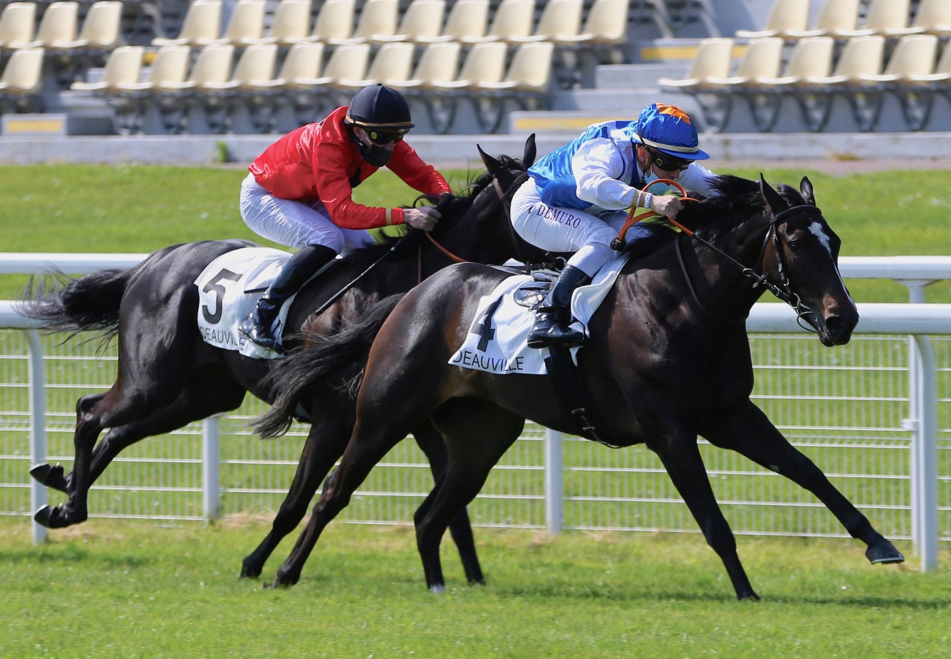 Feelie Win (Holy Roman Emperor) Wins On Debut At Deauville