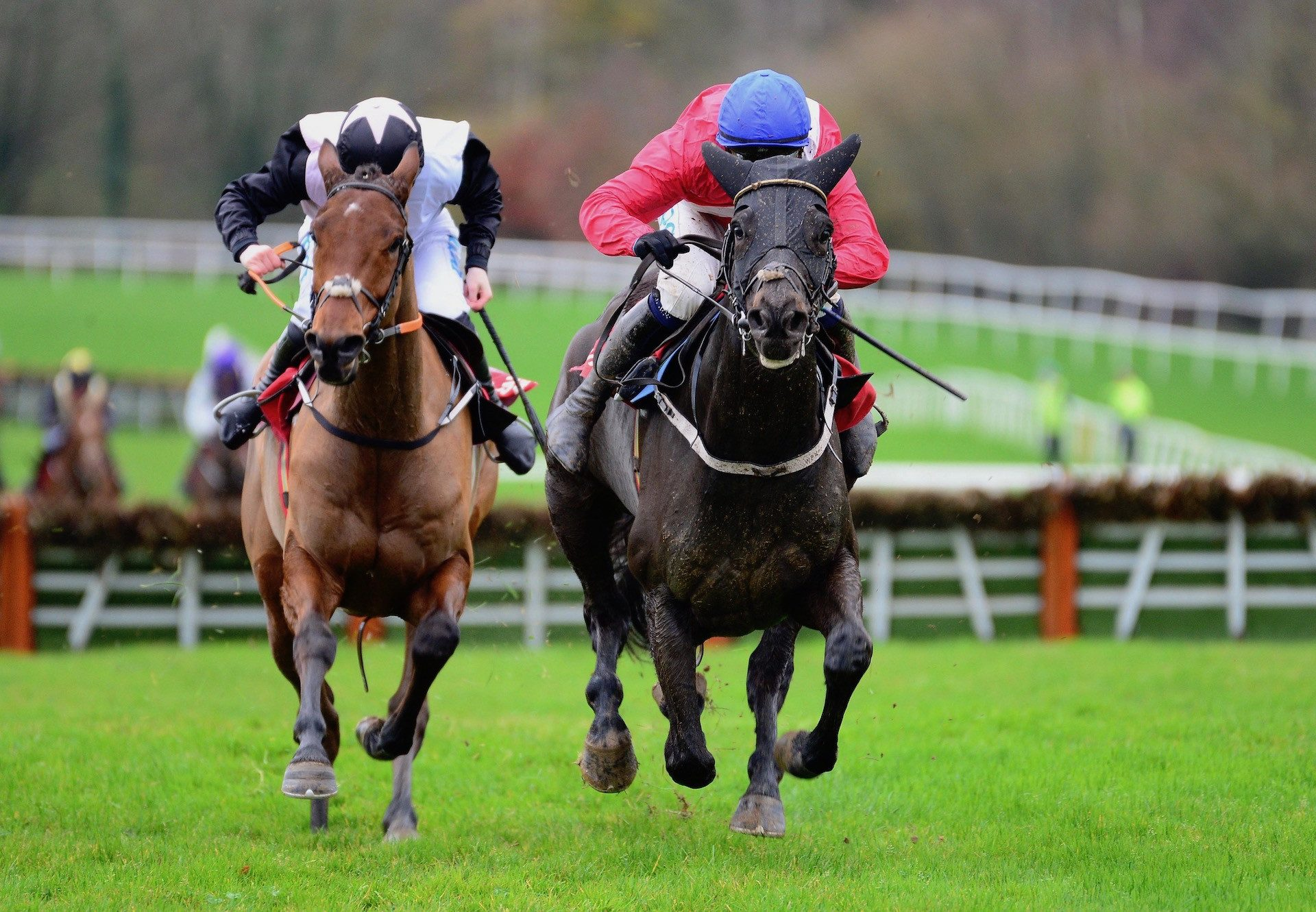 Ferny Hollow (Westerner) Wins The Maiden Hurdle At Gowran Park