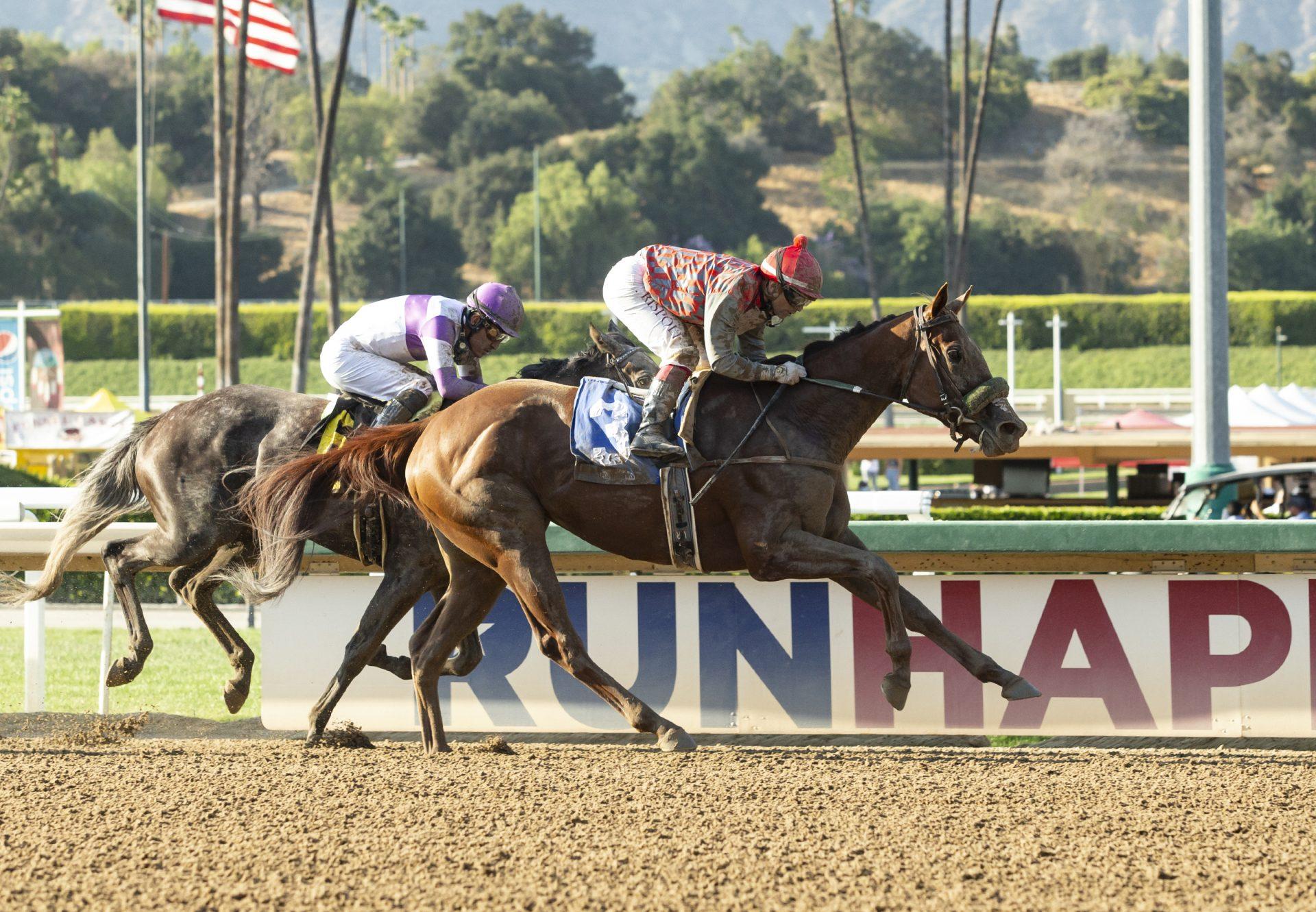 Fi Fi Pharoah (American Pharoah) Wins Melair Stakes at Santa Anita