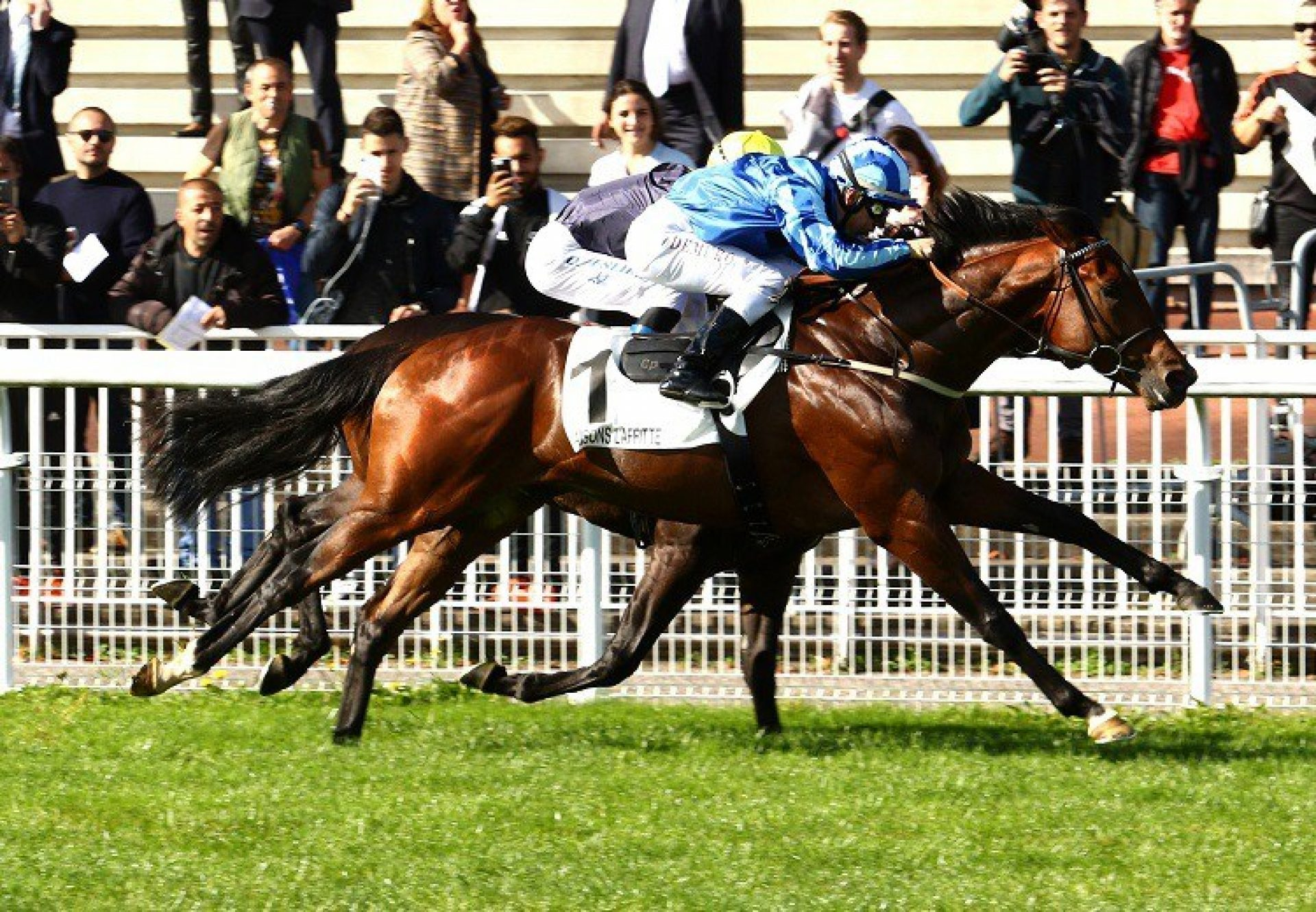 Fighting Irish  G2 Criterium De Maisons Laffitte Web
