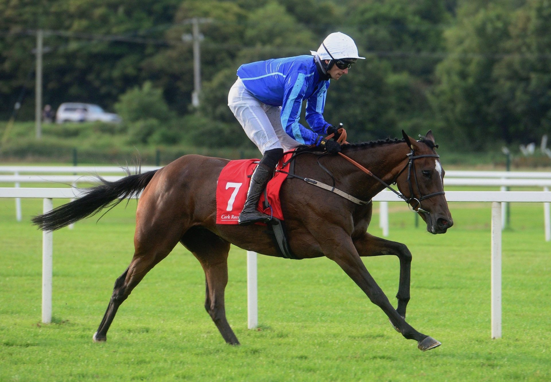Finest Evermore (Yeats) Wins The Bumper At Cork