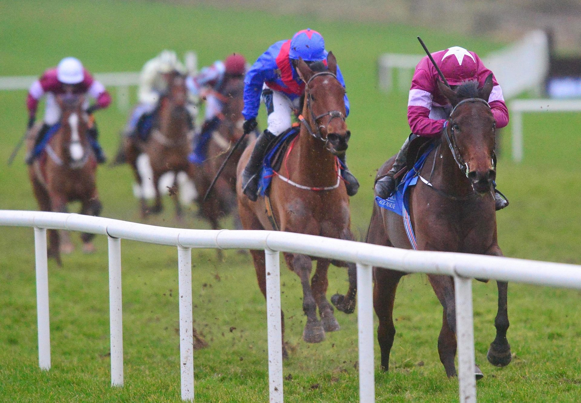 Fire Attack (Westerner) Makes A Winning Debut At Limerick