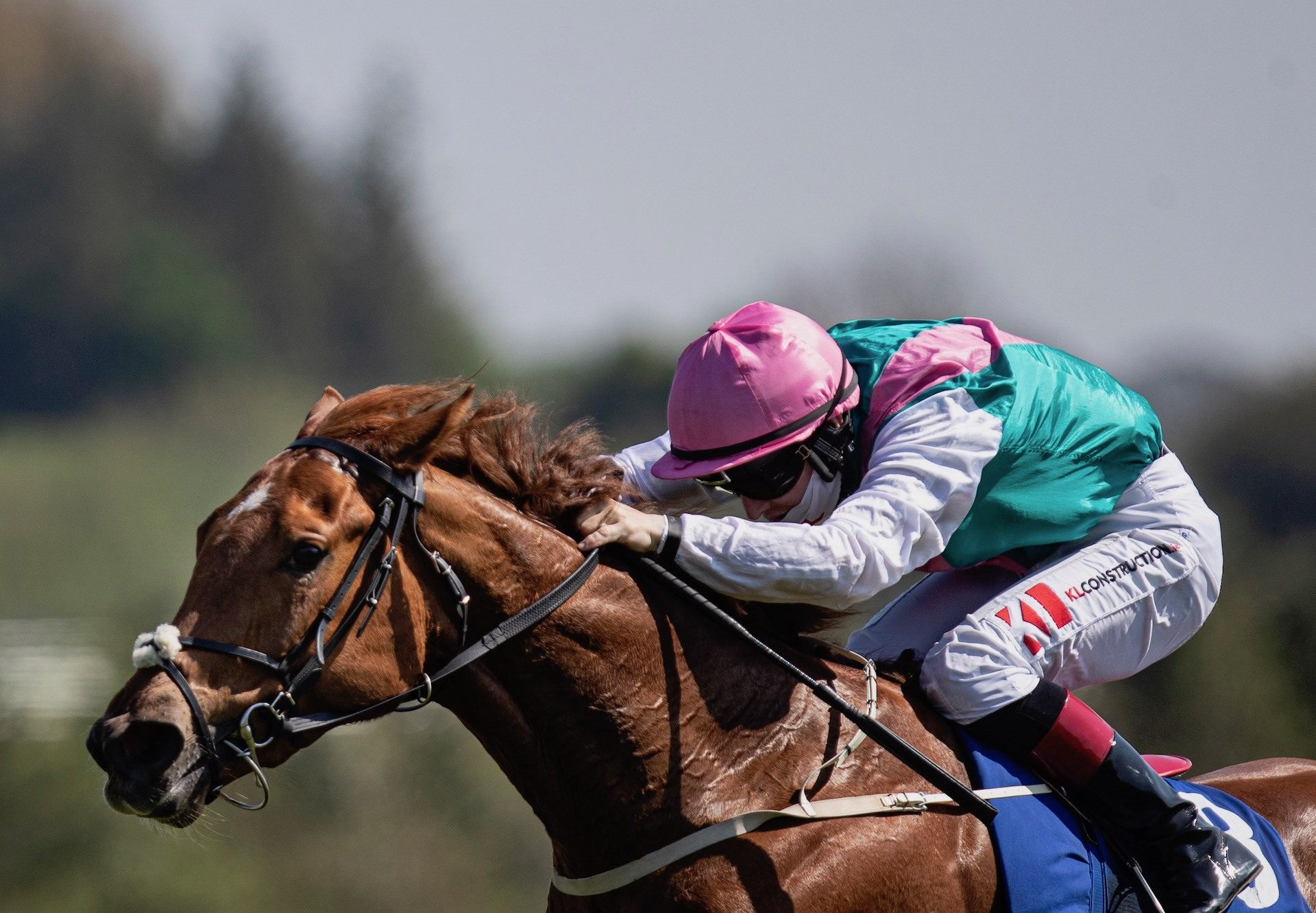 Flagged (Starspangledbanner) Wins The Fillies Maiden At Limerick