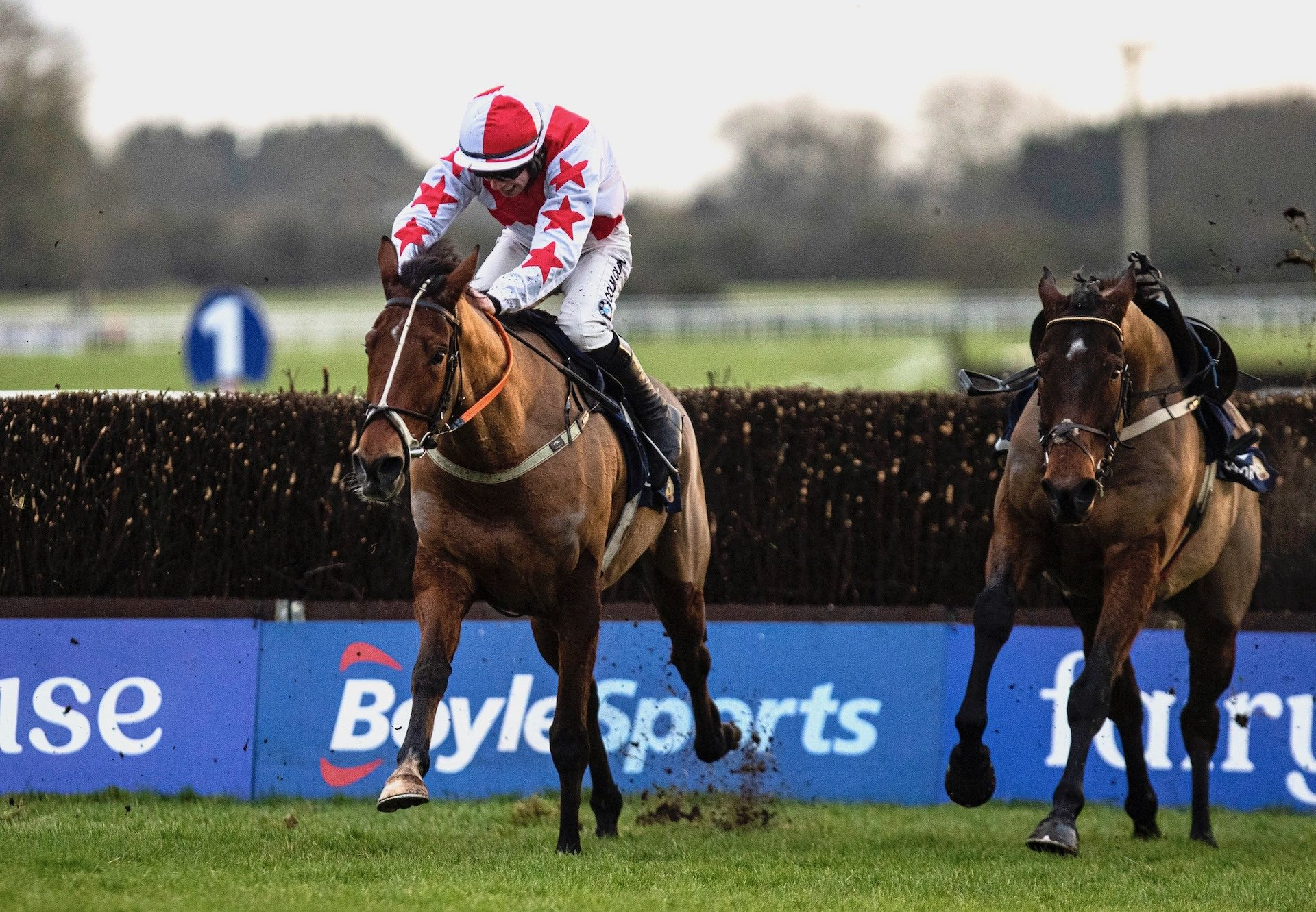 Forza Milan (Milan) Wins The Beginners Chase At Fairyhouse