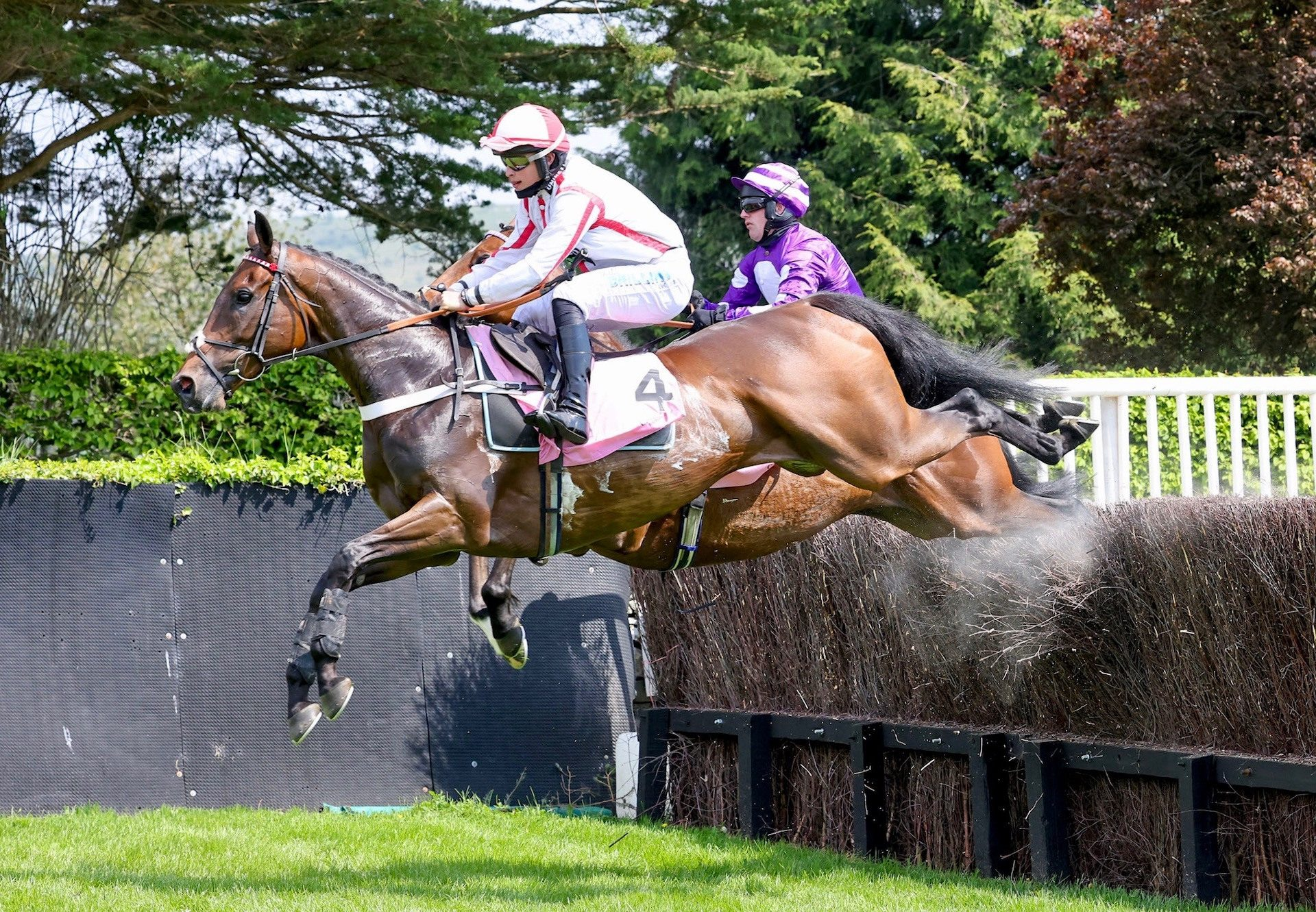 Fugitives Drift (Yeats) Wins The Beginners Chase At Cartmel
