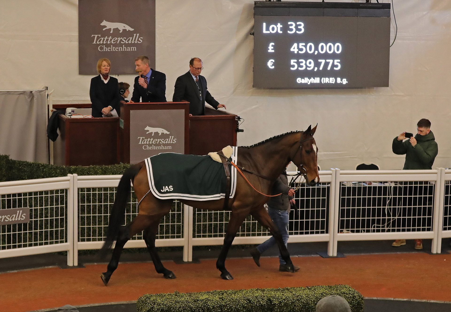 Gallyhill (Getaway) selling for £450,000 at Cheltenham