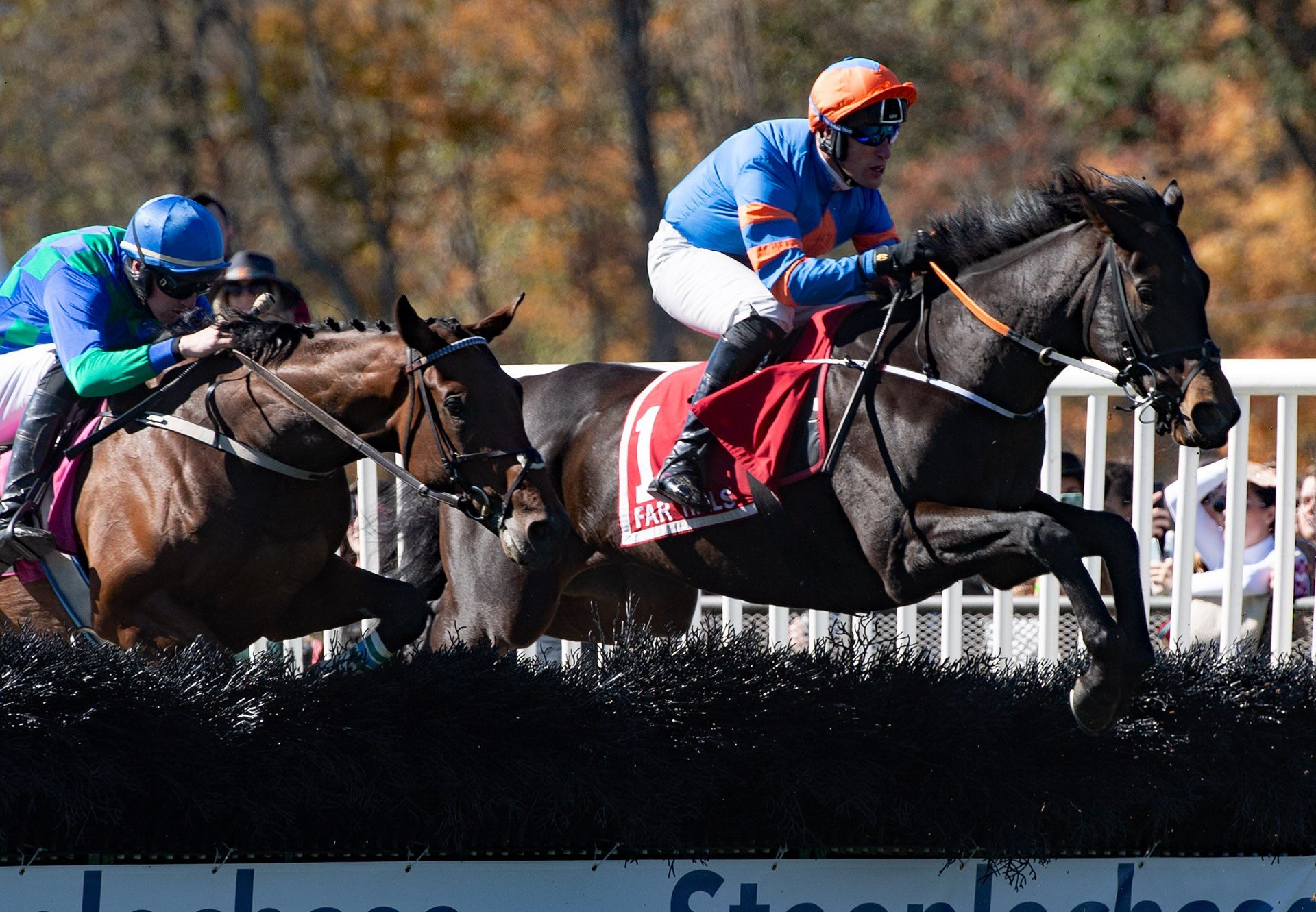 Global Freedom (Maxios) winning a conditions hurdle at Far Hills
