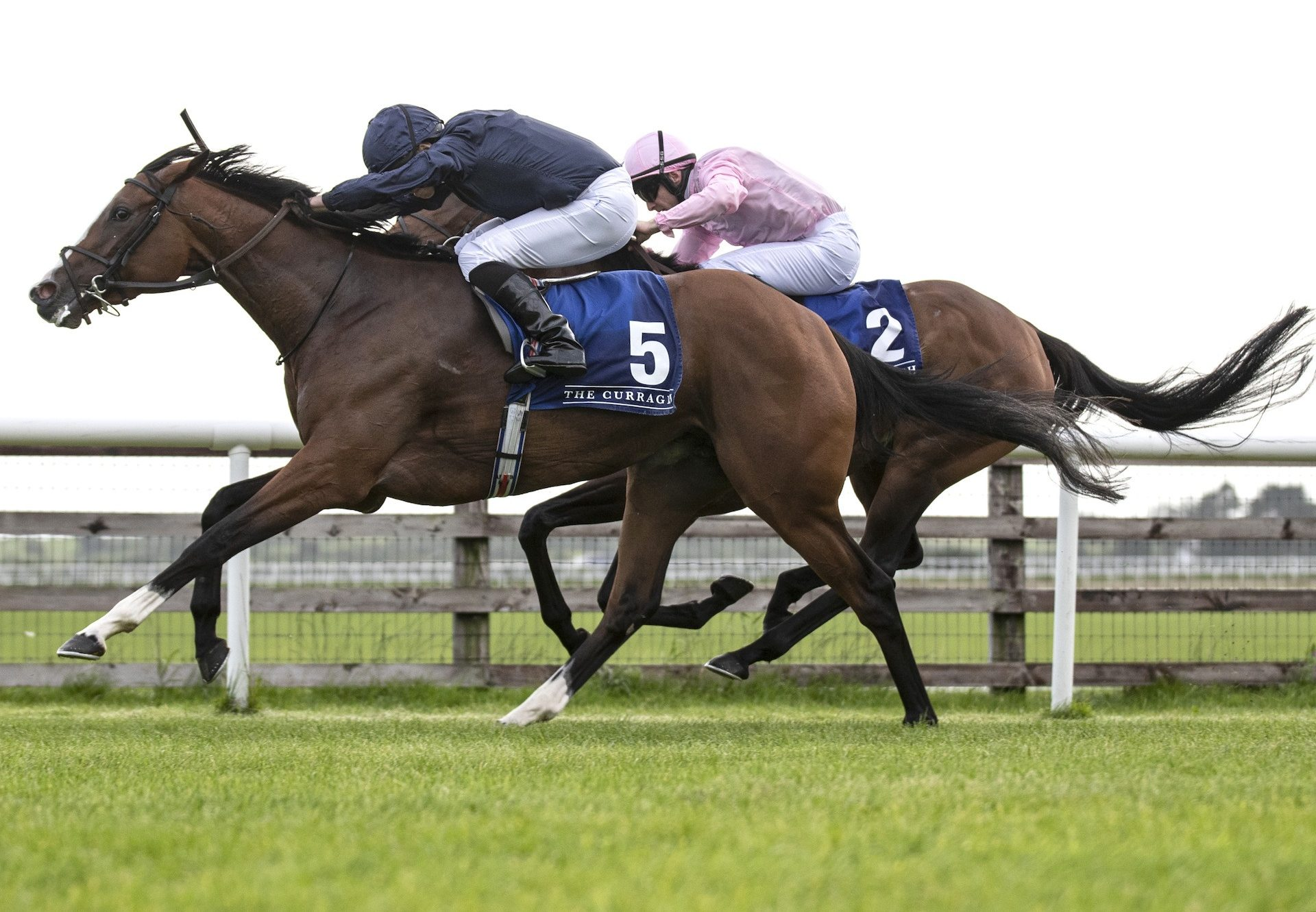 Goddess Becomes The Latest Group Winner By Camelot