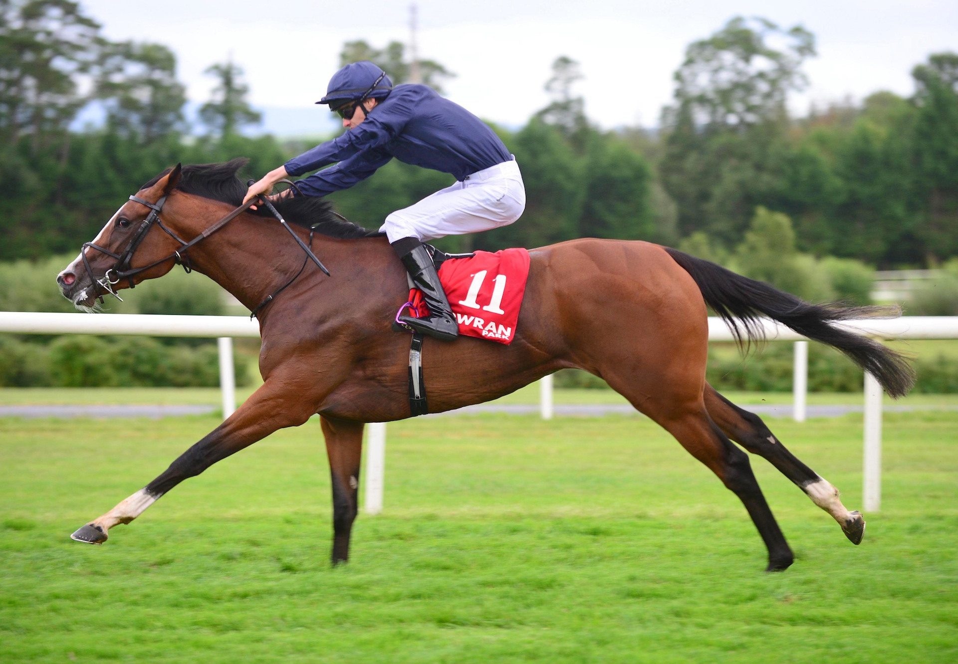 Goddess (Camelot) winning the Listed Hurry Harriet Stakes at Gowran Park