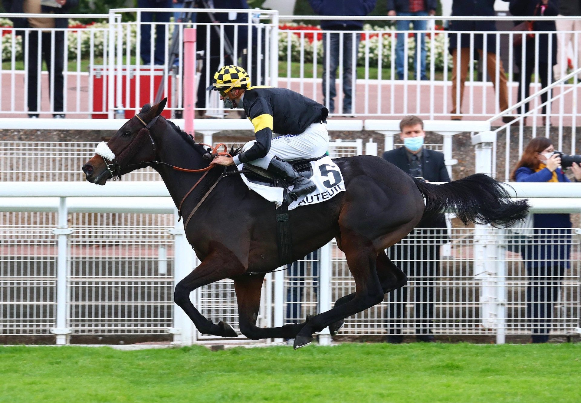 Guerre Des Gaules (Walk In The Park) Wins At Auteuil