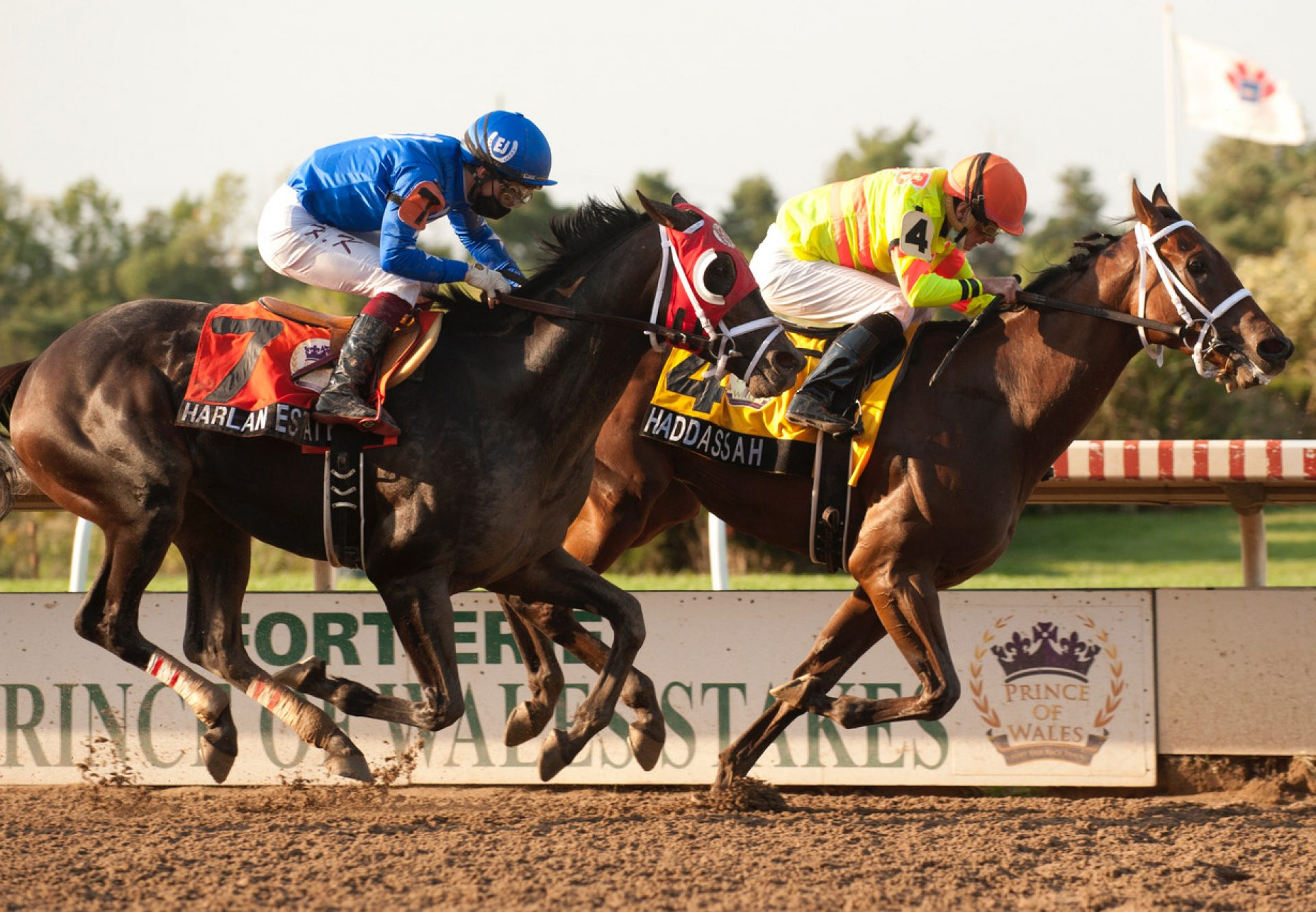 Haddassah (Air Force Blue) Wins Prince Of Wales Stakes