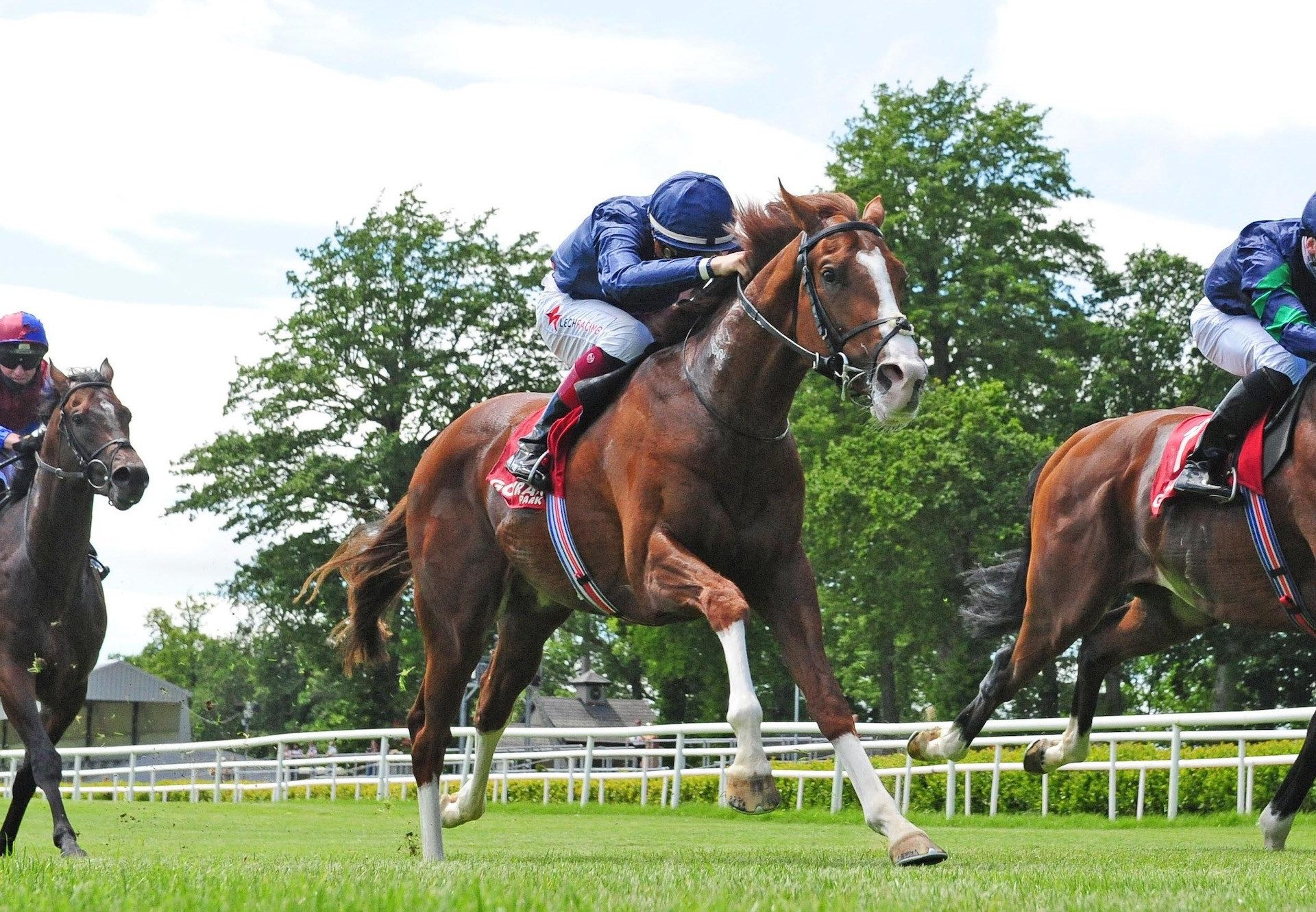 Snake Oil (Westerner) Wins His Bumper At Listowel
