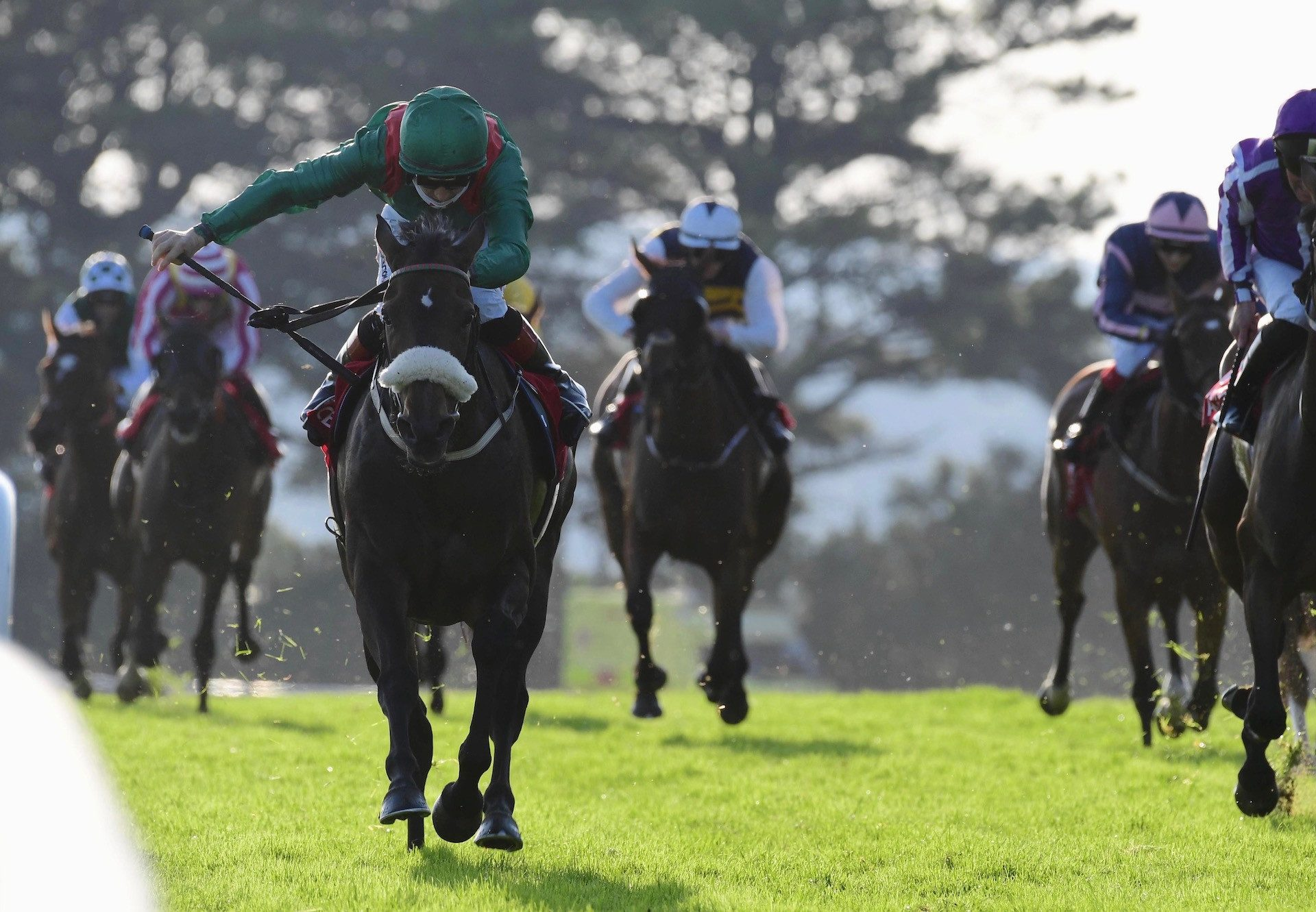 Haparanda (Rock Of Gibraltar) Wins The Listed Oyster Stakes At Galway